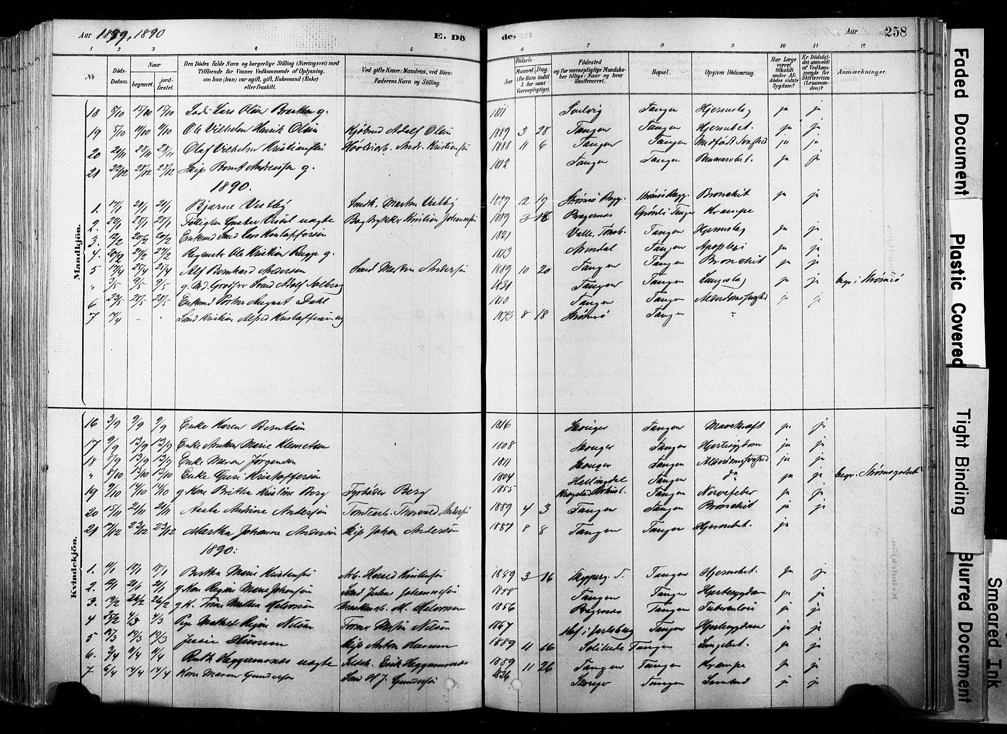 SAKO, Strømsø kirkebøker, F/Fb/L0006: Ministerialbok nr. II 6, 1879-1910, s. 258