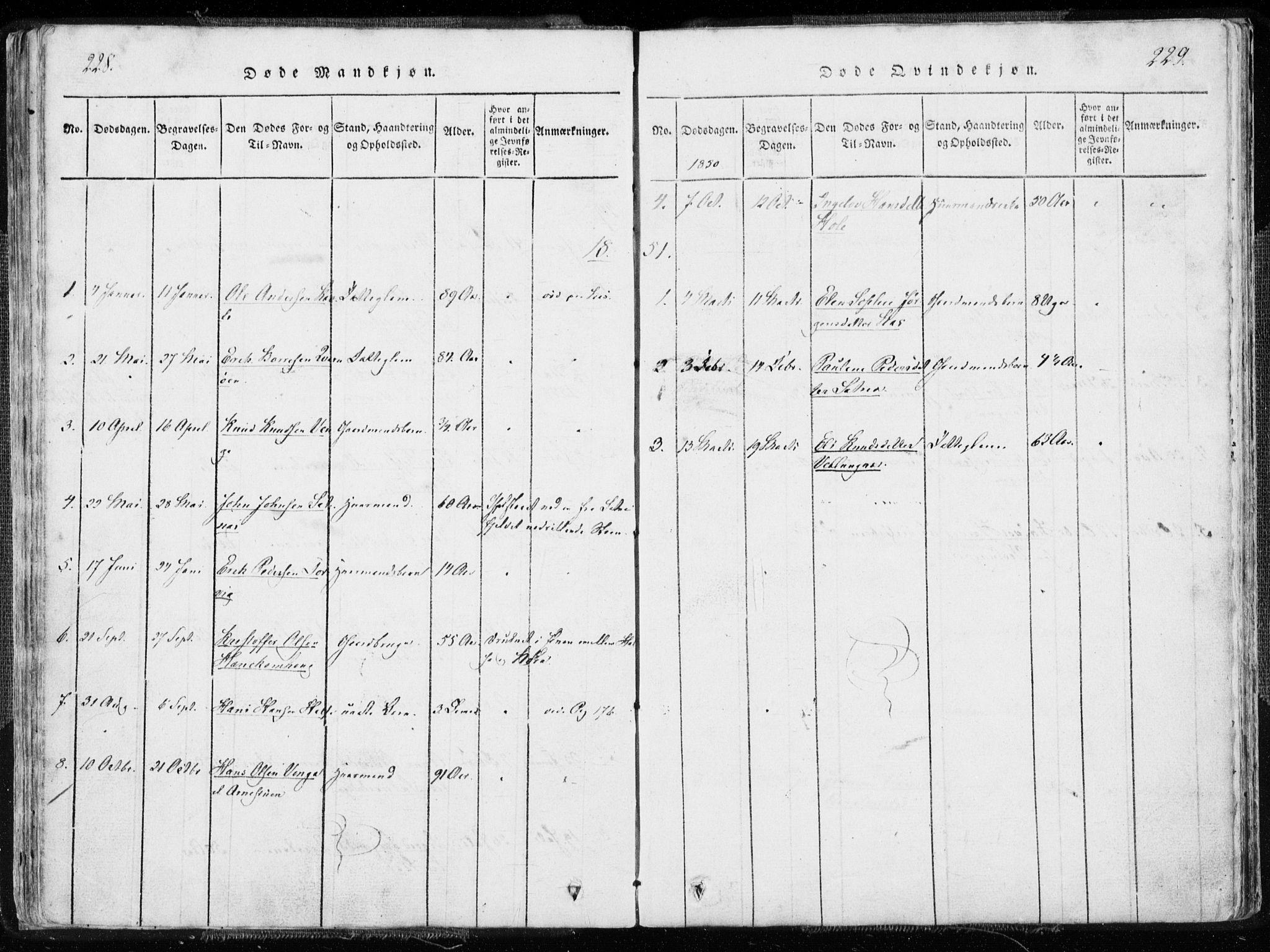 SAT, Ministerialprotokoller, klokkerbøker og fødselsregistre - Møre og Romsdal, 544/L0571: Ministerialbok nr. 544A04, 1818-1853, s. 228-229