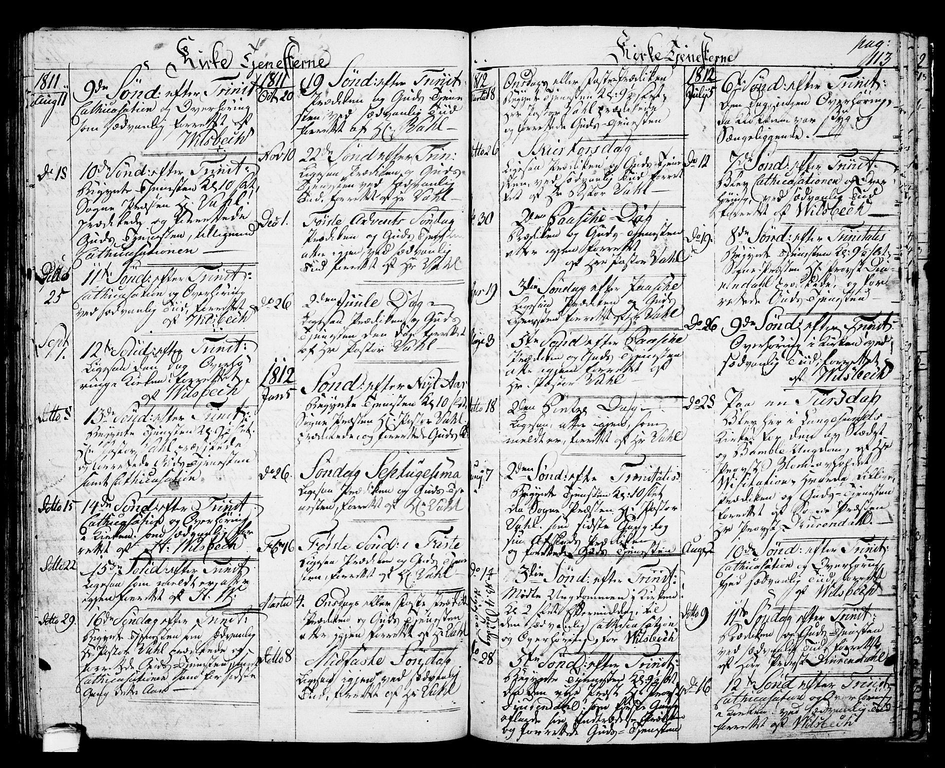 SAKO, Langesund kirkebøker, G/Ga/L0002: Klokkerbok nr. 2, 1801-1815, s. 113