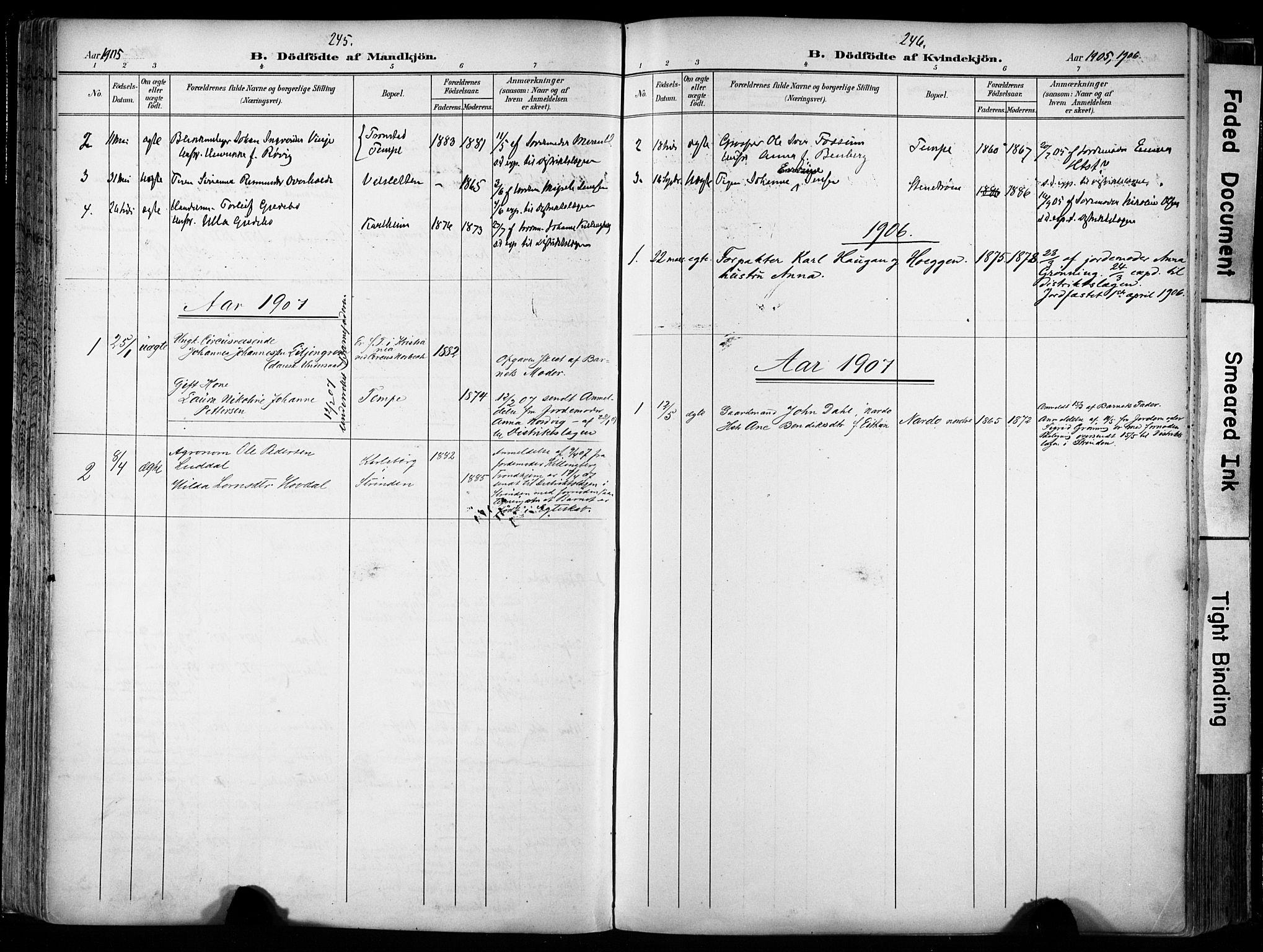 SAT, Ministerialprotokoller, klokkerbøker og fødselsregistre - Sør-Trøndelag, 606/L0301: Ministerialbok nr. 606A16, 1894-1907, s. 245-246