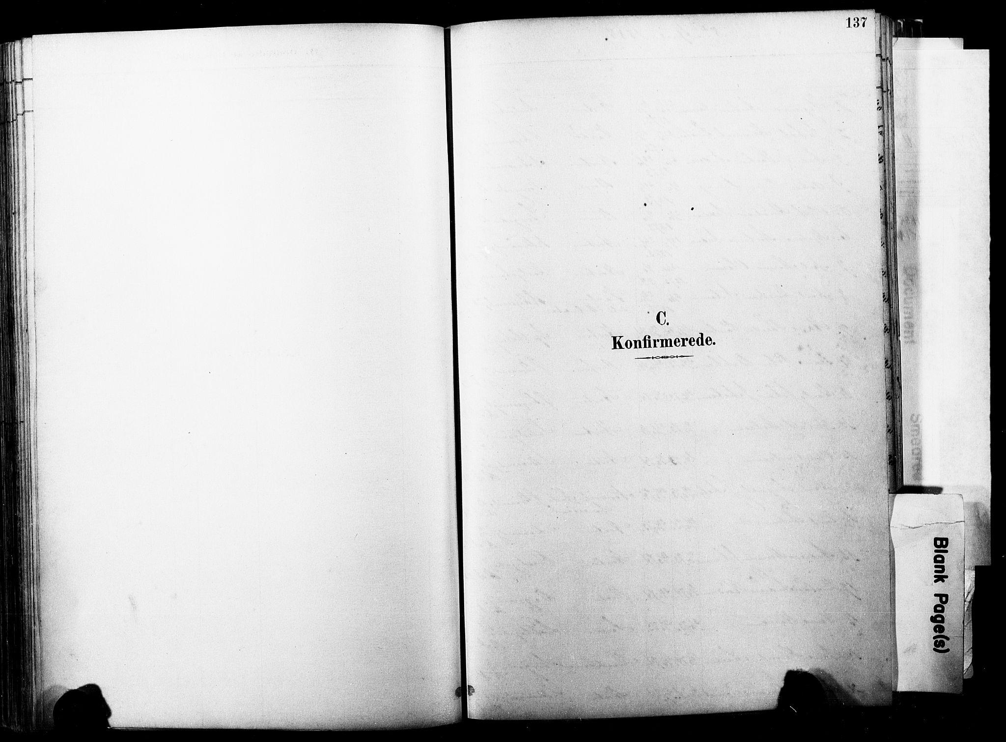 SAKO, Horten kirkebøker, F/Fa/L0004: Ministerialbok nr. 4, 1888-1895, s. 137