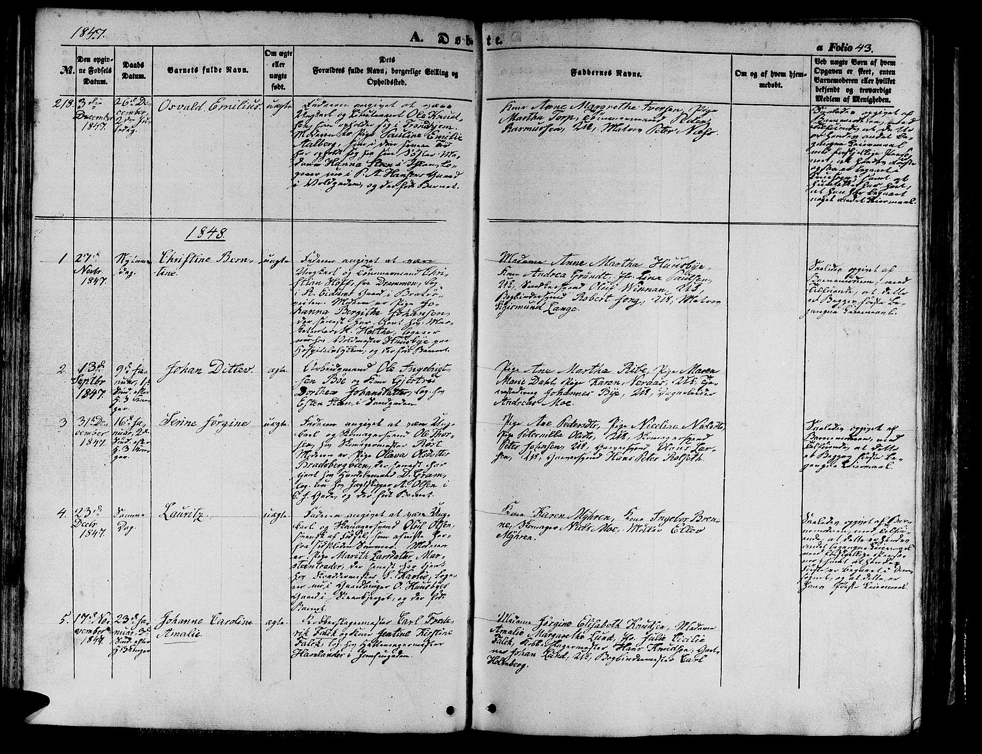 SAT, Ministerialprotokoller, klokkerbøker og fødselsregistre - Sør-Trøndelag, 602/L0137: Klokkerbok nr. 602C05, 1846-1856, s. 43
