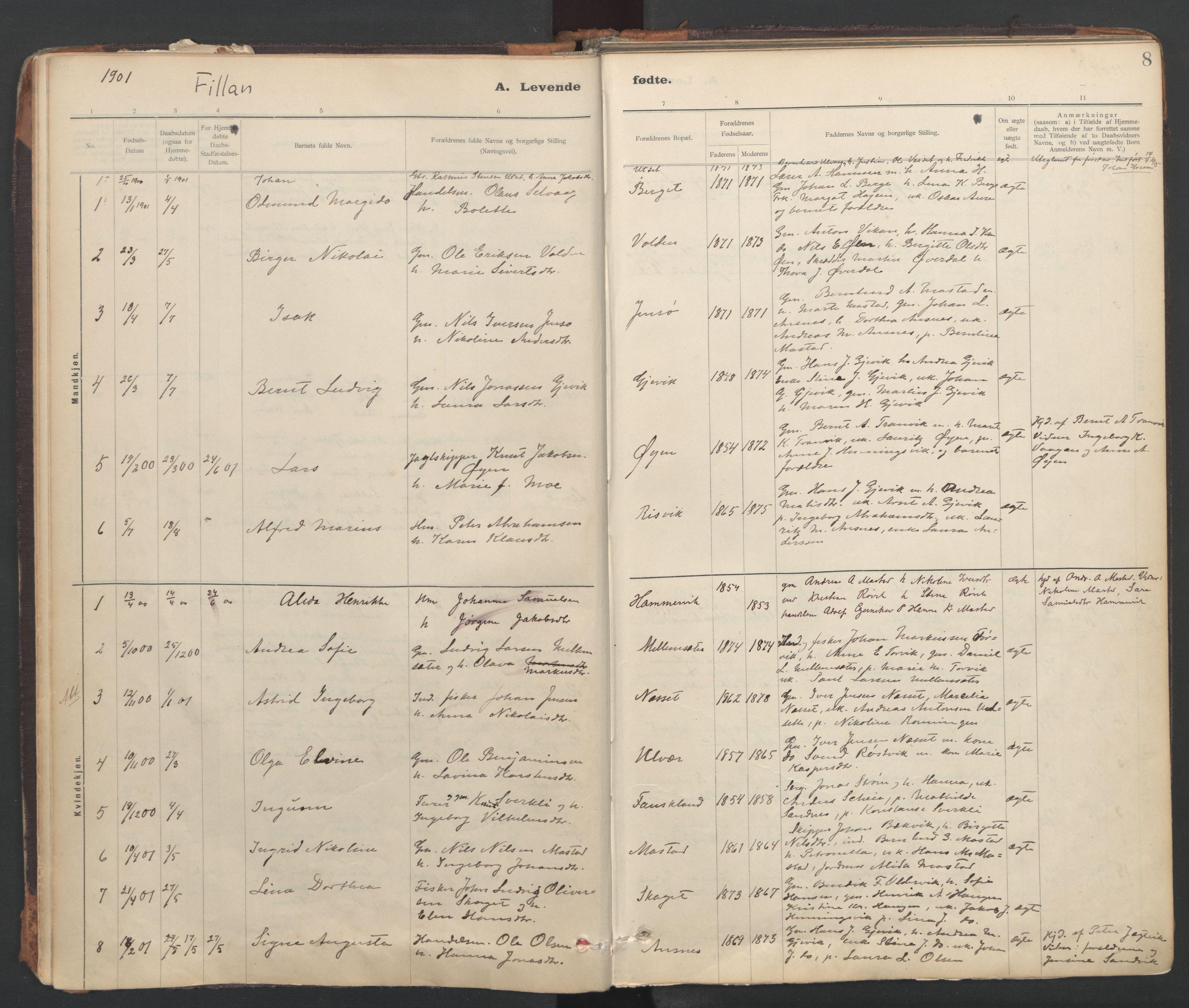 SAT, Ministerialprotokoller, klokkerbøker og fødselsregistre - Sør-Trøndelag, 637/L0559: Ministerialbok nr. 637A02, 1899-1923, s. 8