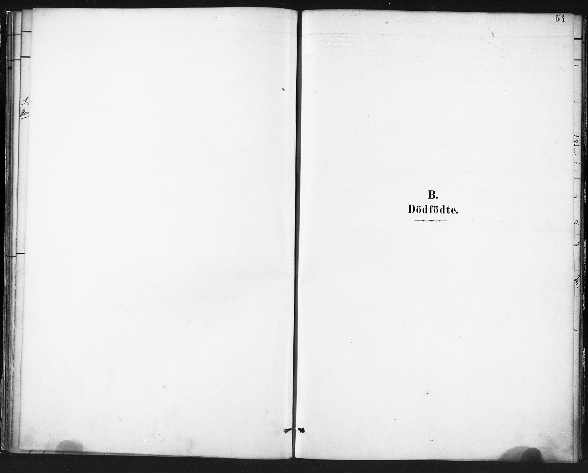SAT, Ministerialprotokoller, klokkerbøker og fødselsregistre - Nordland, 803/L0071: Ministerialbok nr. 803A01, 1881-1897, s. 54
