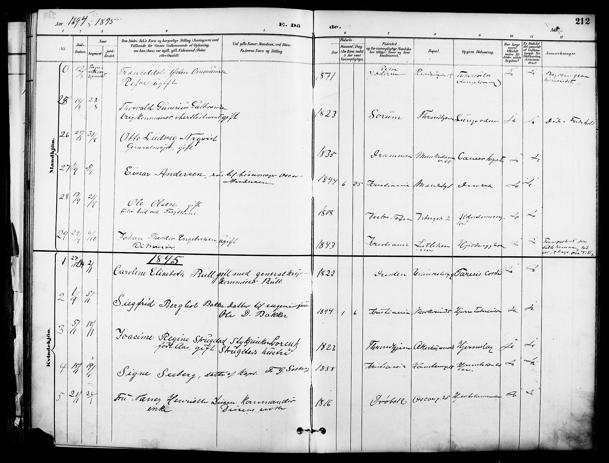 SAO, Garnisonsmenigheten Kirkebøker, F/Fa/L0013: Ministerialbok nr. 13, 1894-1904, s. 212