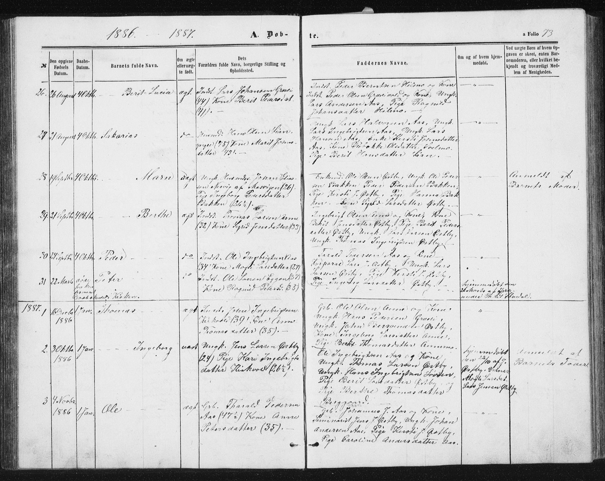 SAT, Ministerialprotokoller, klokkerbøker og fødselsregistre - Sør-Trøndelag, 698/L1166: Klokkerbok nr. 698C03, 1861-1887, s. 73