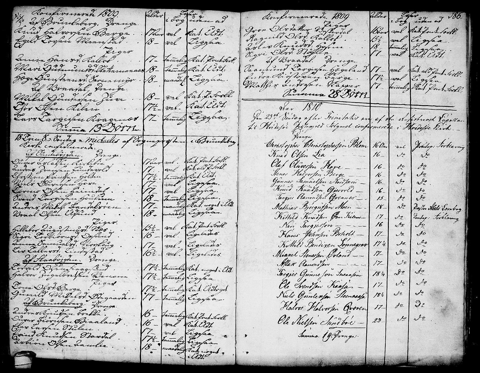 SAKO, Kviteseid kirkebøker, F/Fa/L0004: Ministerialbok nr. I 4, 1800-1814, s. 186
