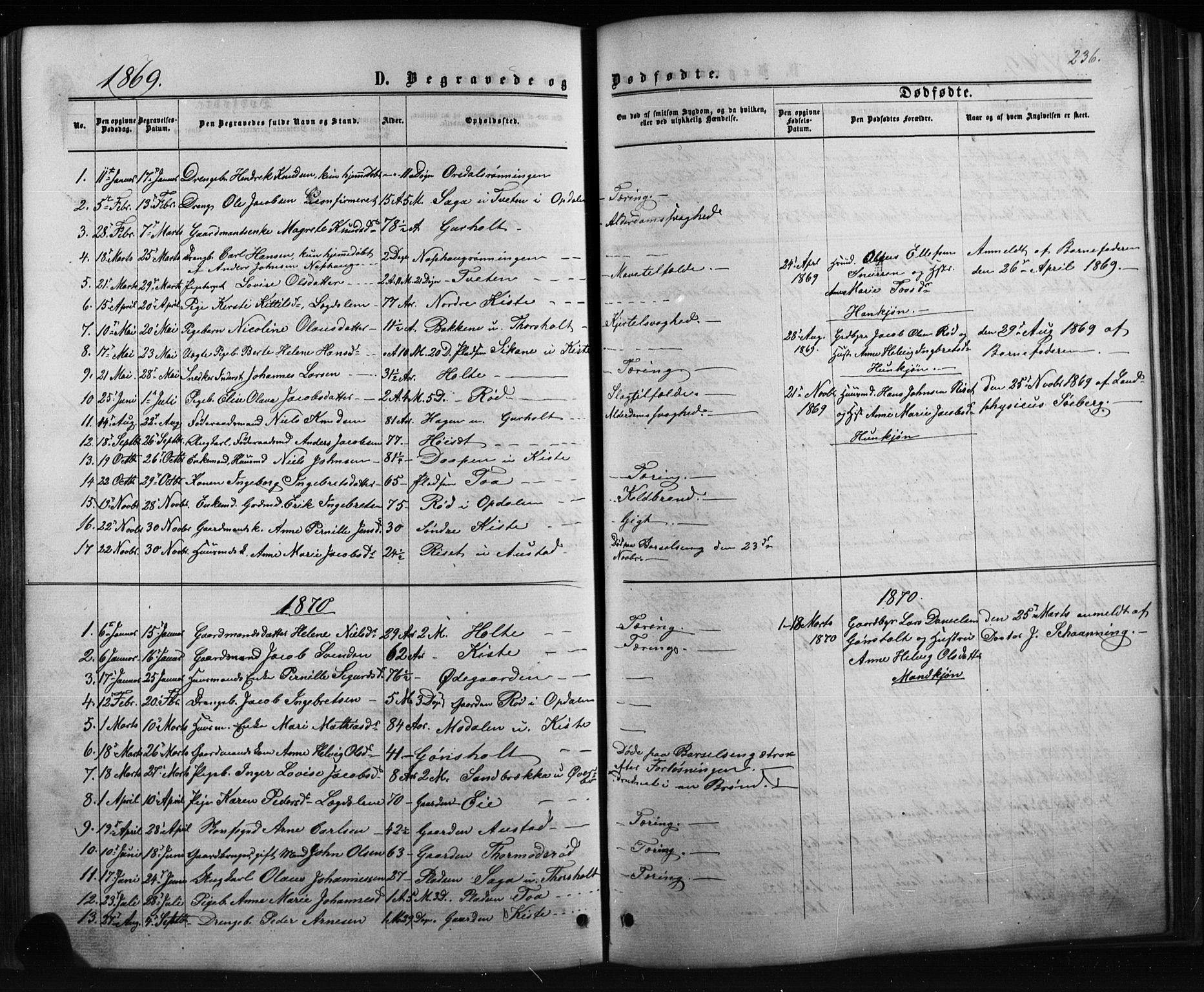 SAKO, Siljan kirkebøker, G/Ga/L0002: Klokkerbok nr. 2, 1864-1908, s. 236