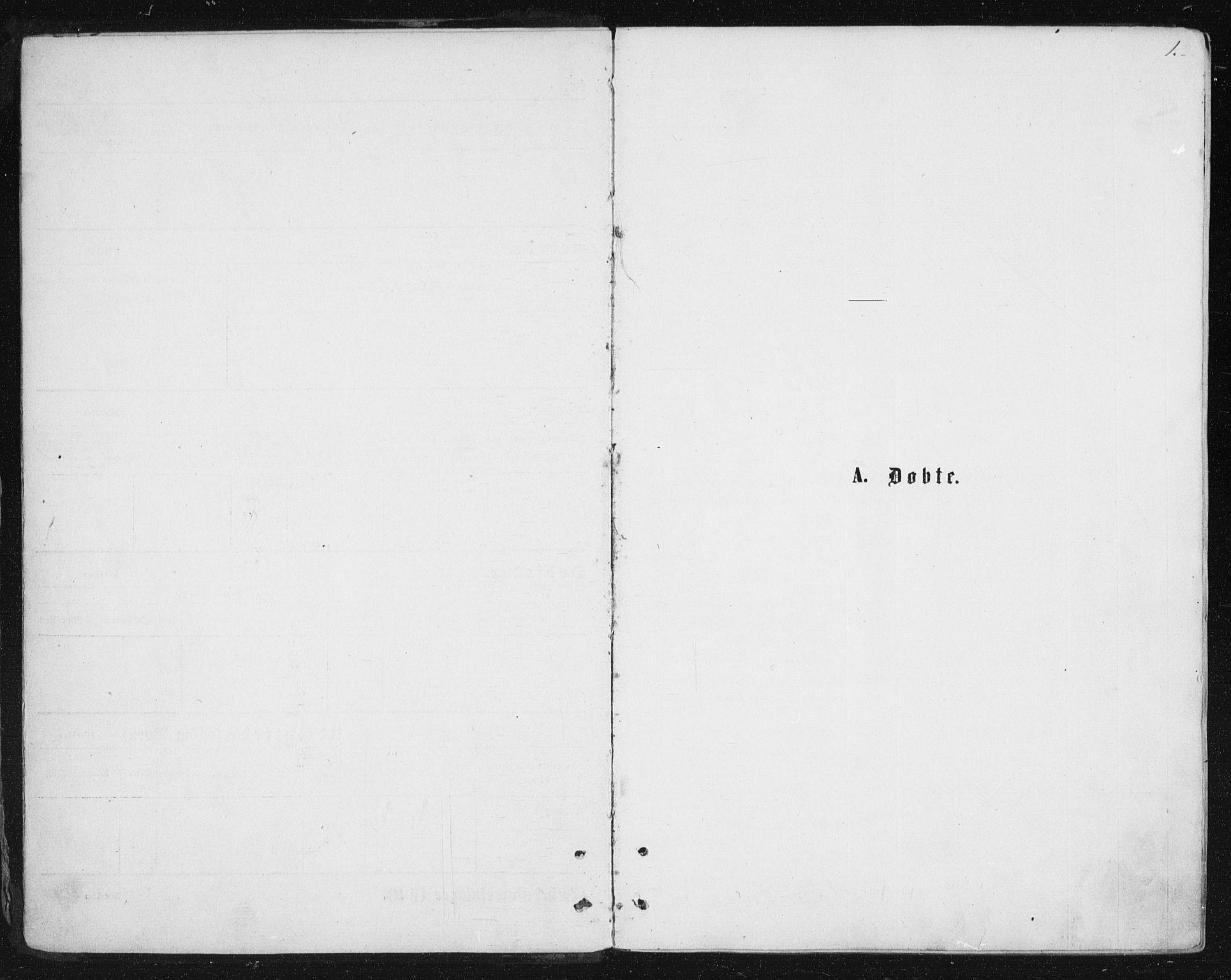 SAT, Ministerialprotokoller, klokkerbøker og fødselsregistre - Nordland, 888/L1243: Ministerialbok nr. 888A09, 1876-1879, s. 1