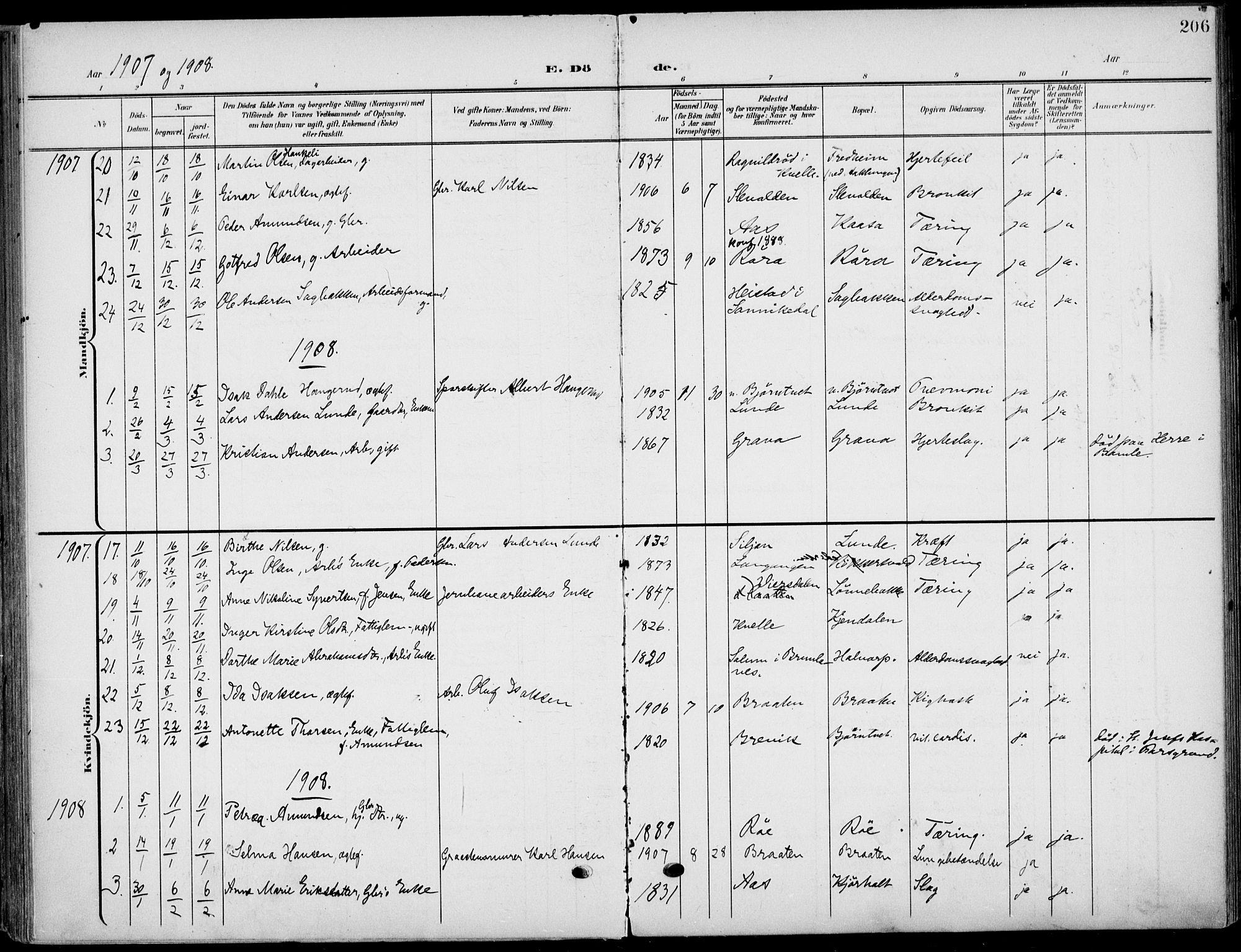 SAKO, Eidanger kirkebøker, F/Fa/L0013: Ministerialbok nr. 13, 1900-1913, s. 206