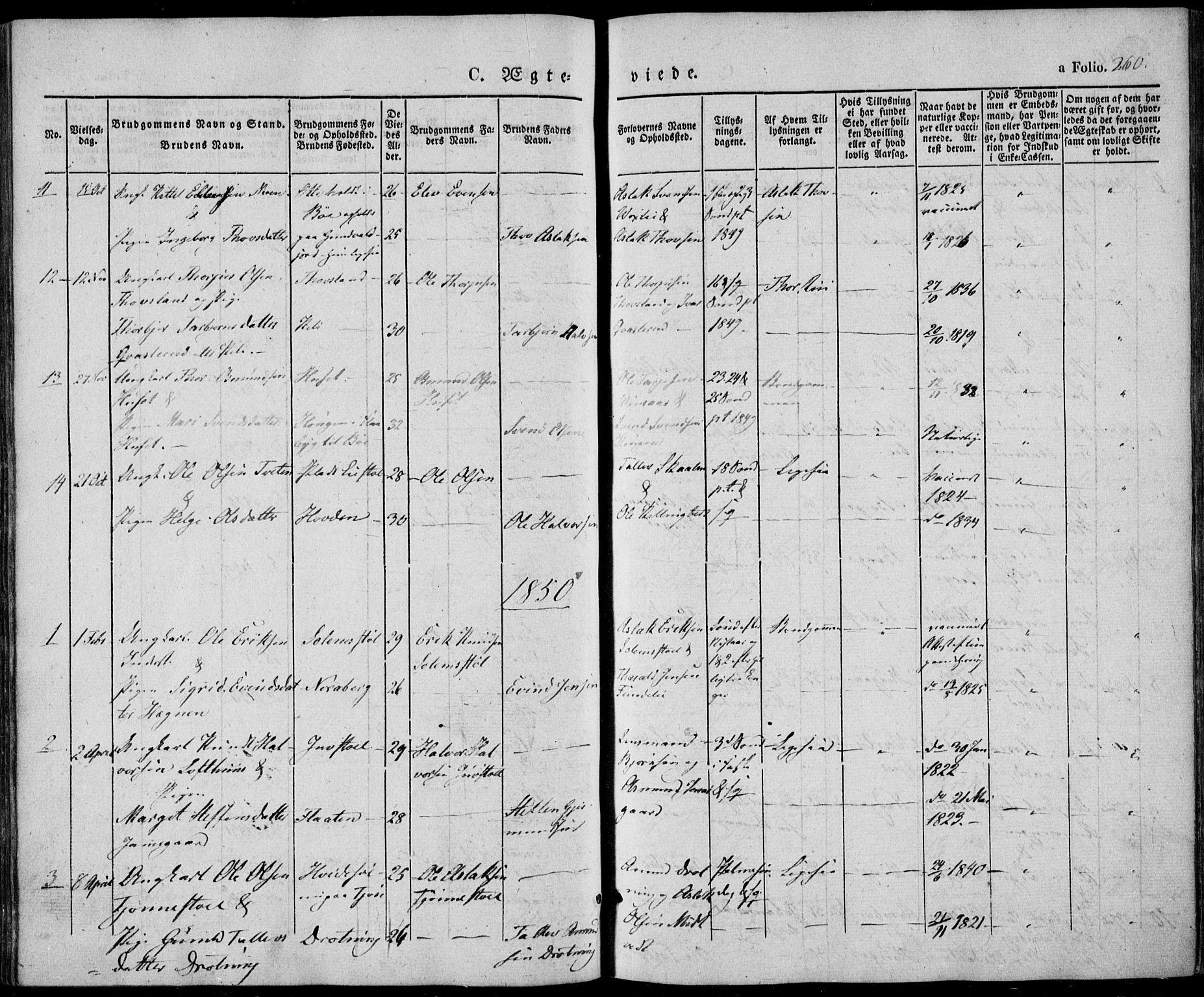 SAKO, Vinje kirkebøker, F/Fa/L0004: Ministerialbok nr. I 4, 1843-1869, s. 260