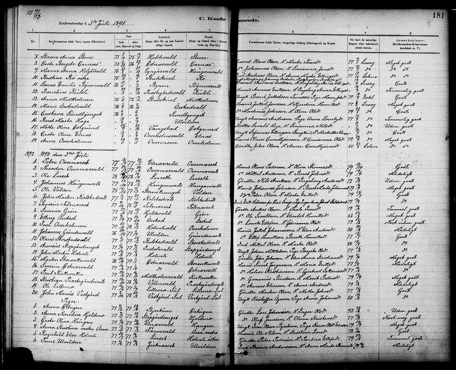 SAT, Ministerialprotokoller, klokkerbøker og fødselsregistre - Nord-Trøndelag, 724/L0267: Klokkerbok nr. 724C03, 1879-1898, s. 181