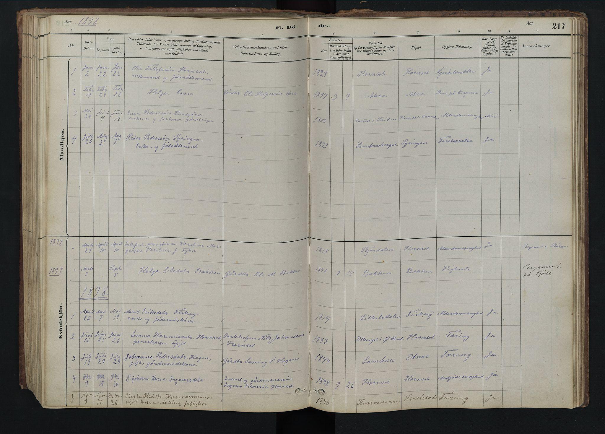 SAH, Rendalen prestekontor, H/Ha/Hab/L0009: Klokkerbok nr. 9, 1879-1902, s. 217