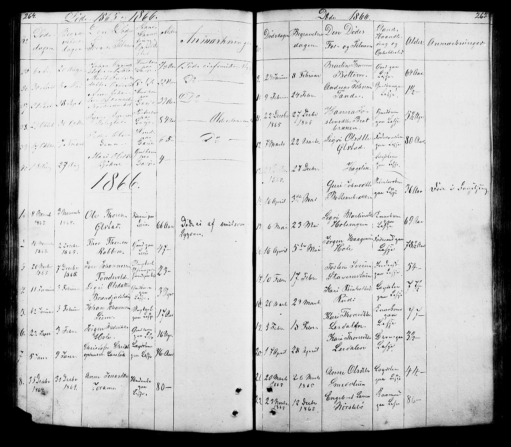 SAH, Lesja prestekontor, Klokkerbok nr. 5, 1850-1894, s. 264-265