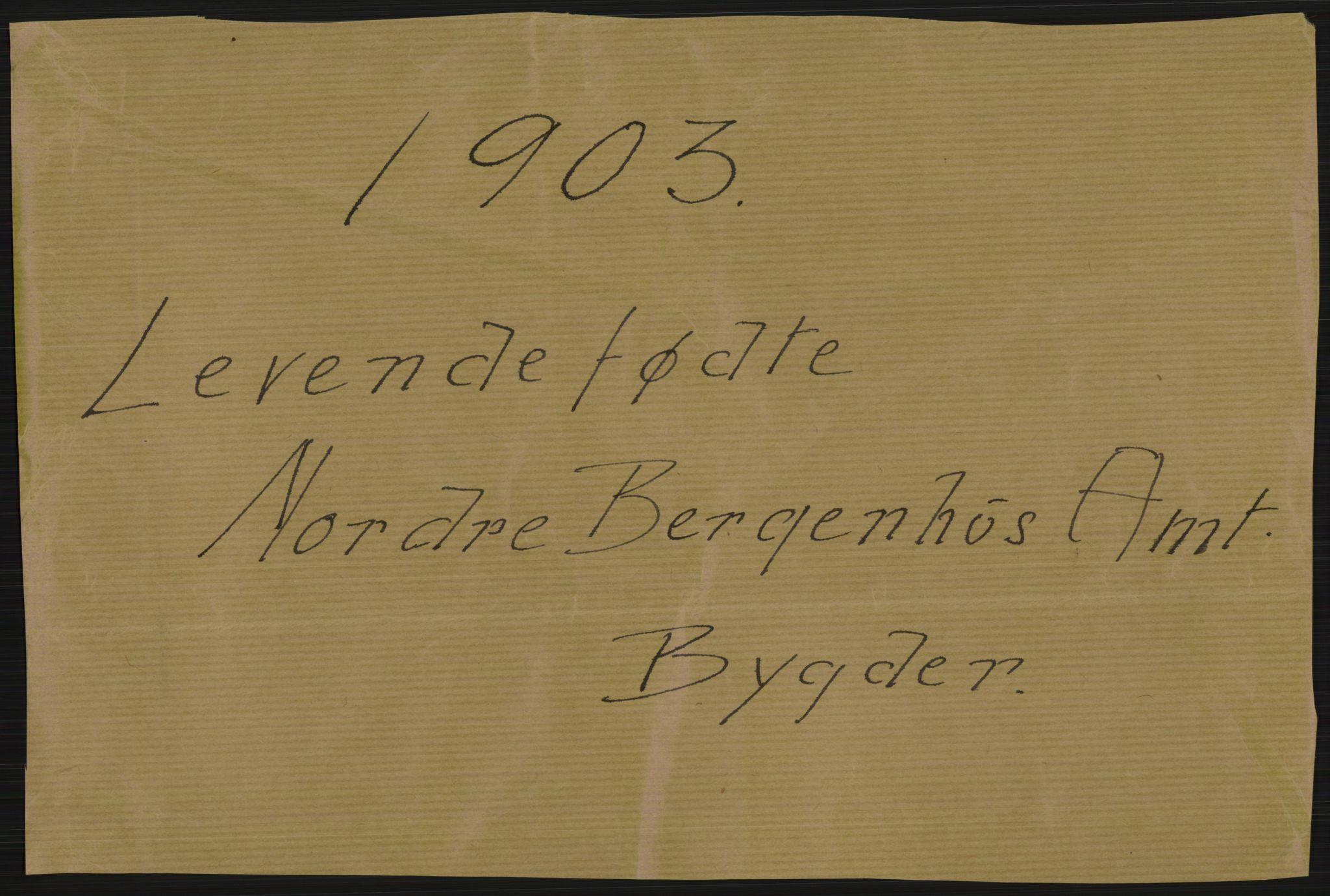 RA, Statistisk sentralbyrå, Sosiodemografiske emner, Befolkning, D/Df/Dfa/Dfaa/L0015: Nordre Bergenhus: Fødte, gifte, døde. Bygder, 1903