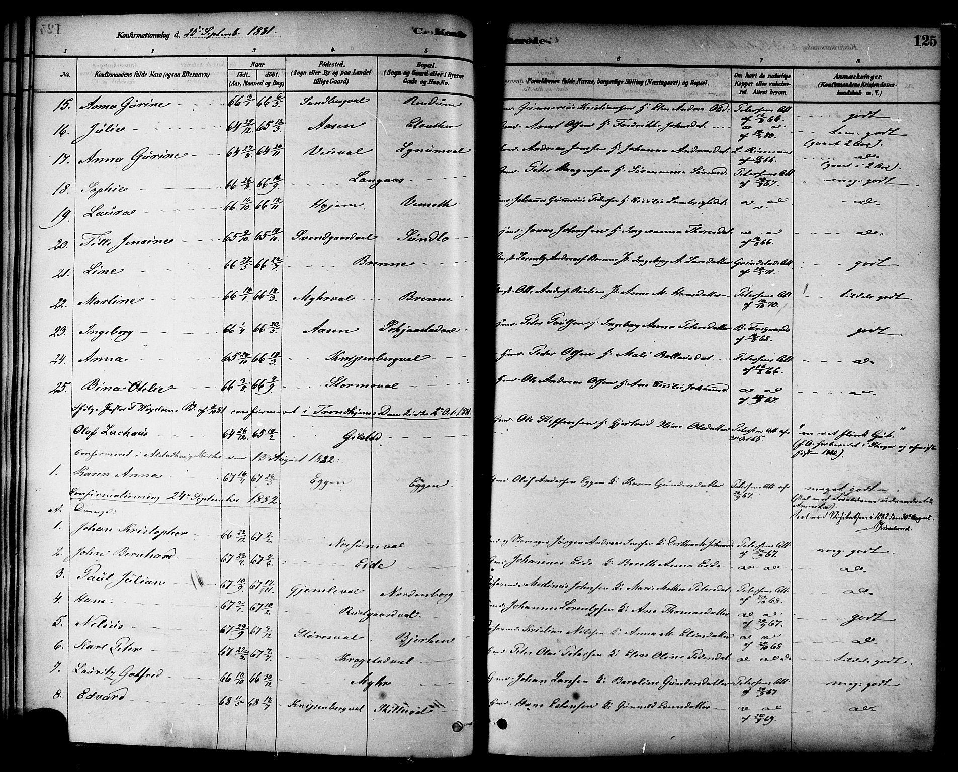 SAT, Ministerialprotokoller, klokkerbøker og fødselsregistre - Nord-Trøndelag, 717/L0159: Ministerialbok nr. 717A09, 1878-1898, s. 125