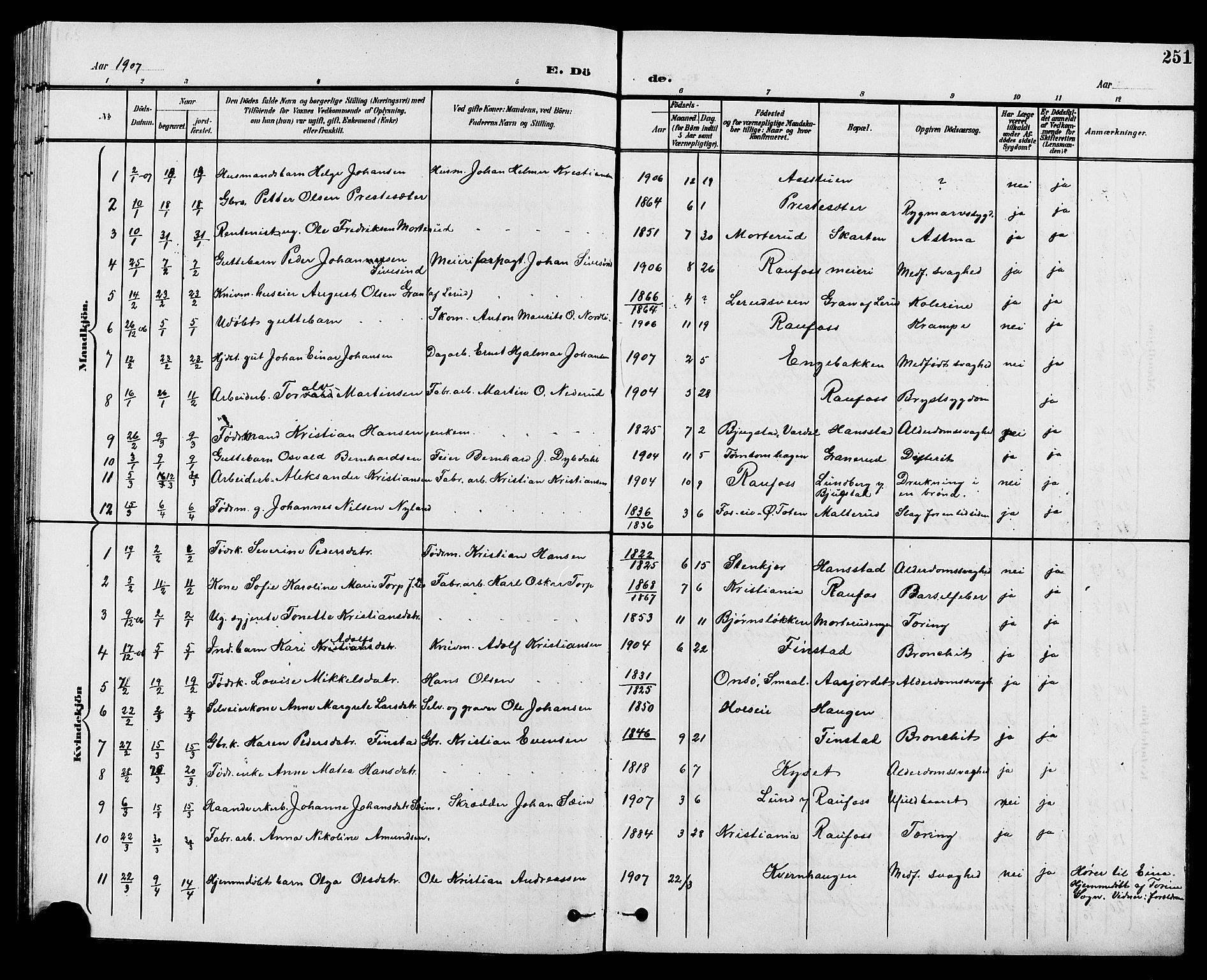 SAH, Vestre Toten prestekontor, Klokkerbok nr. 10, 1900-1912, s. 251