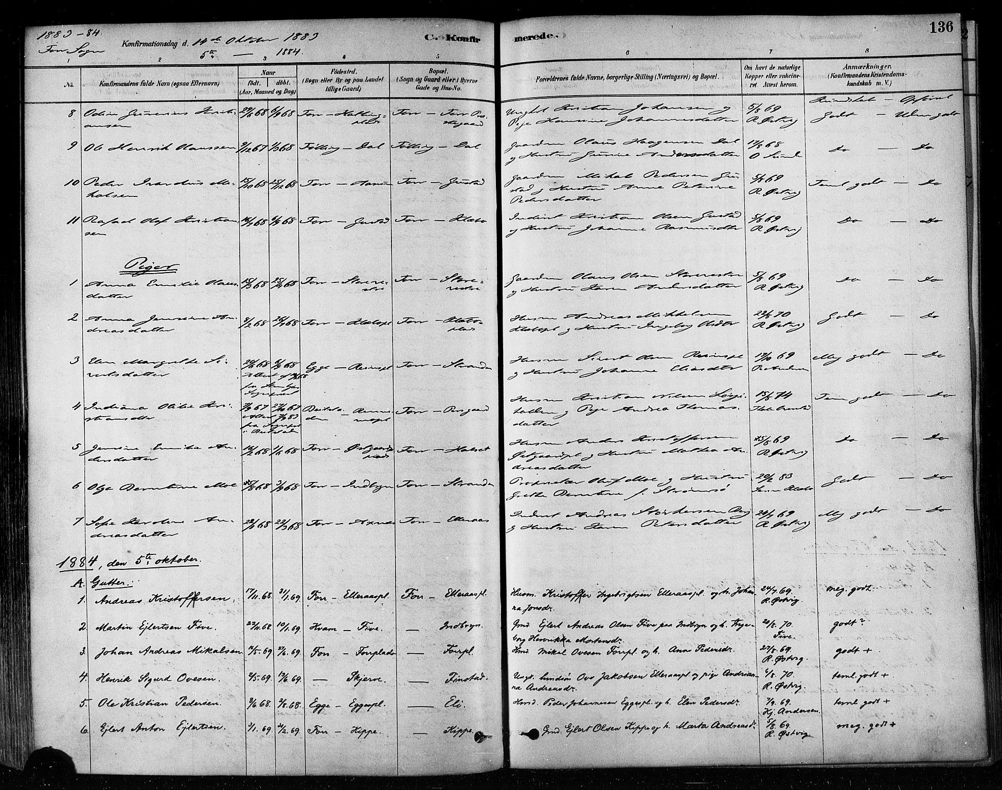 SAT, Ministerialprotokoller, klokkerbøker og fødselsregistre - Nord-Trøndelag, 746/L0448: Ministerialbok nr. 746A07 /1, 1878-1900, s. 136