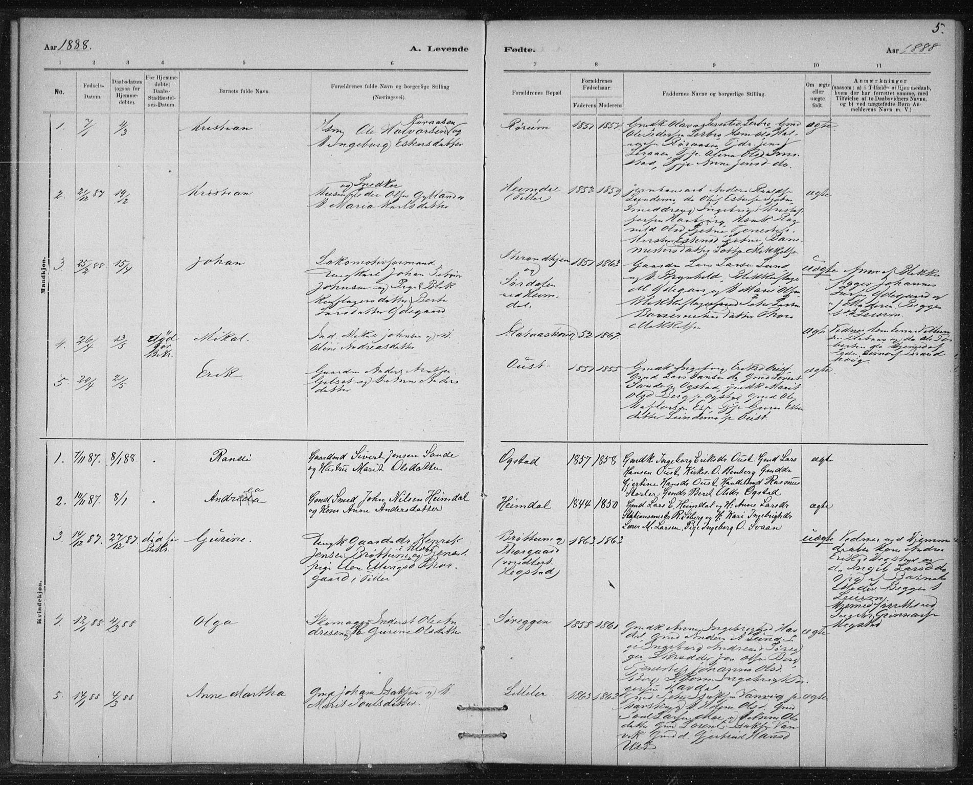 SAT, Ministerialprotokoller, klokkerbøker og fødselsregistre - Sør-Trøndelag, 613/L0392: Ministerialbok nr. 613A01, 1887-1906, s. 5