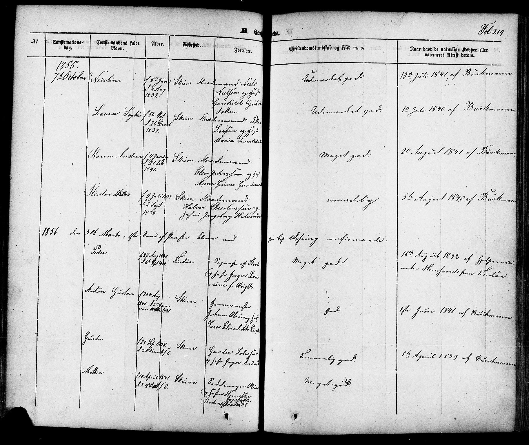 SAKO, Skien kirkebøker, F/Fa/L0006a: Ministerialbok nr. 6A, 1843-1856, s. 219