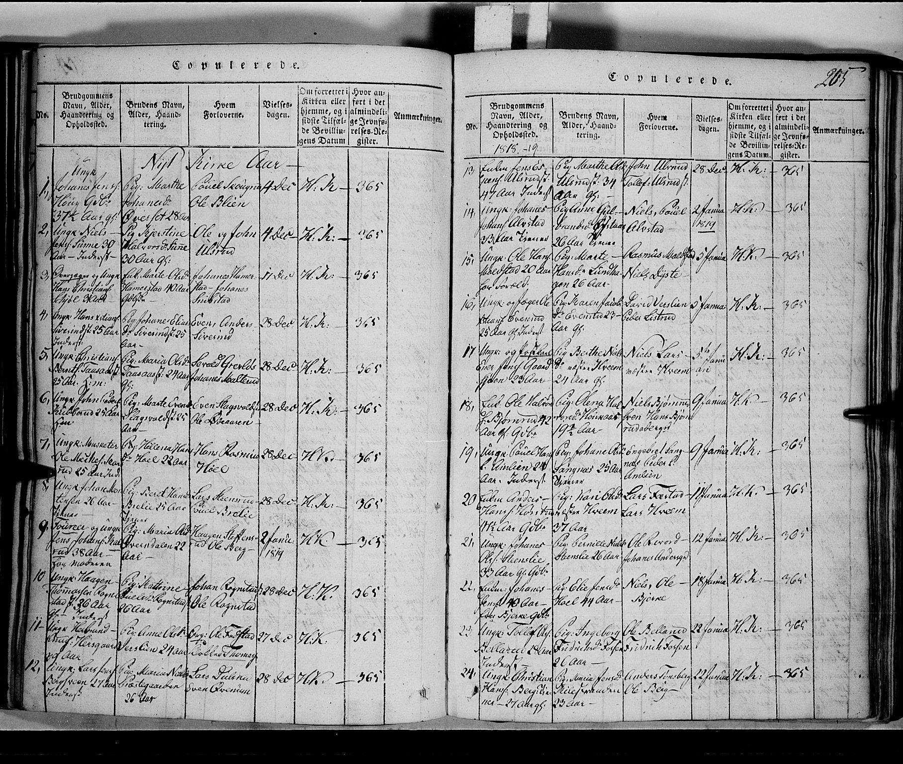 SAH, Toten prestekontor, Klokkerbok nr. 1, 1814-1820, s. 205