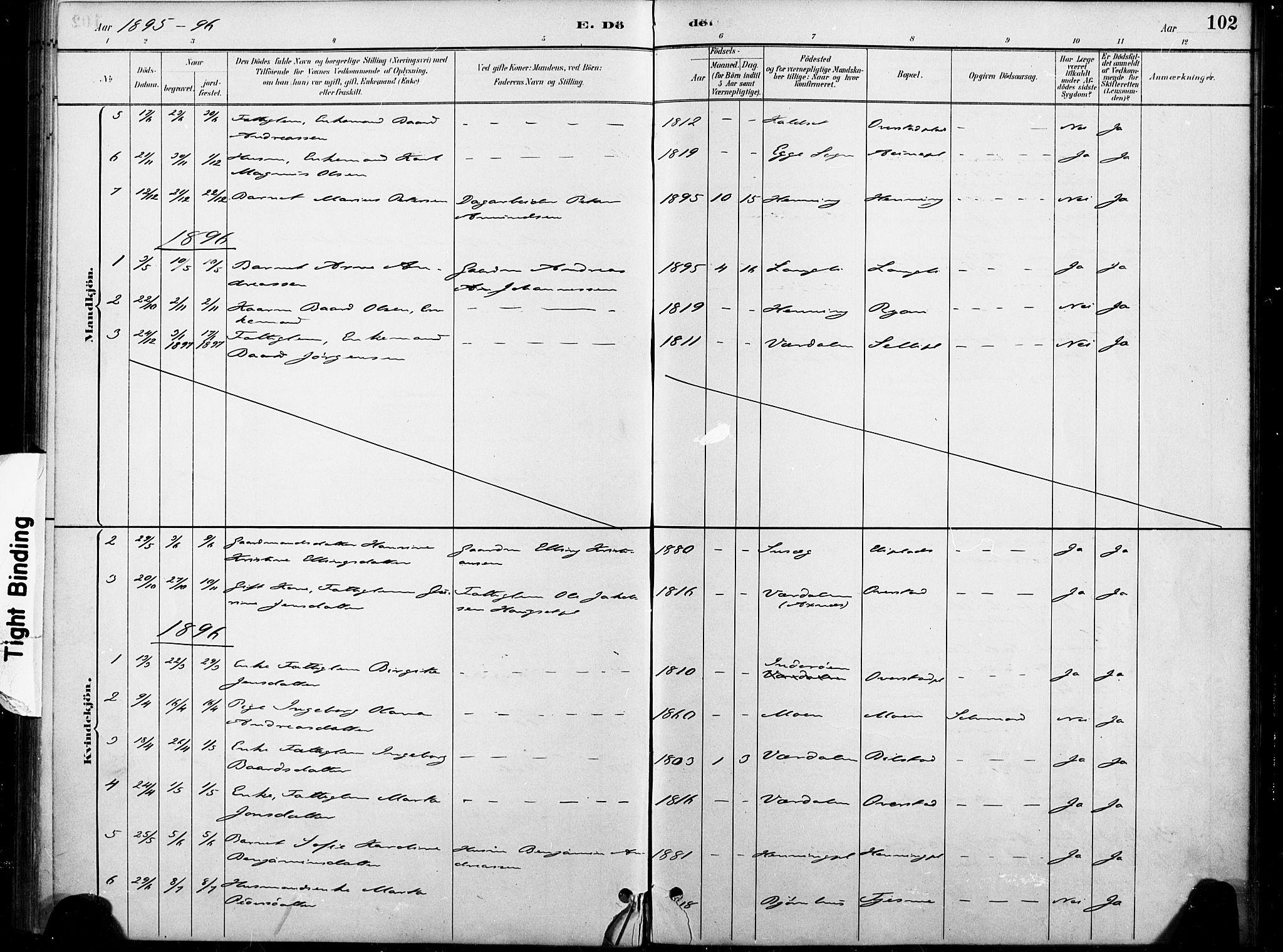 SAT, Ministerialprotokoller, klokkerbøker og fødselsregistre - Nord-Trøndelag, 738/L0364: Ministerialbok nr. 738A01, 1884-1902, s. 102