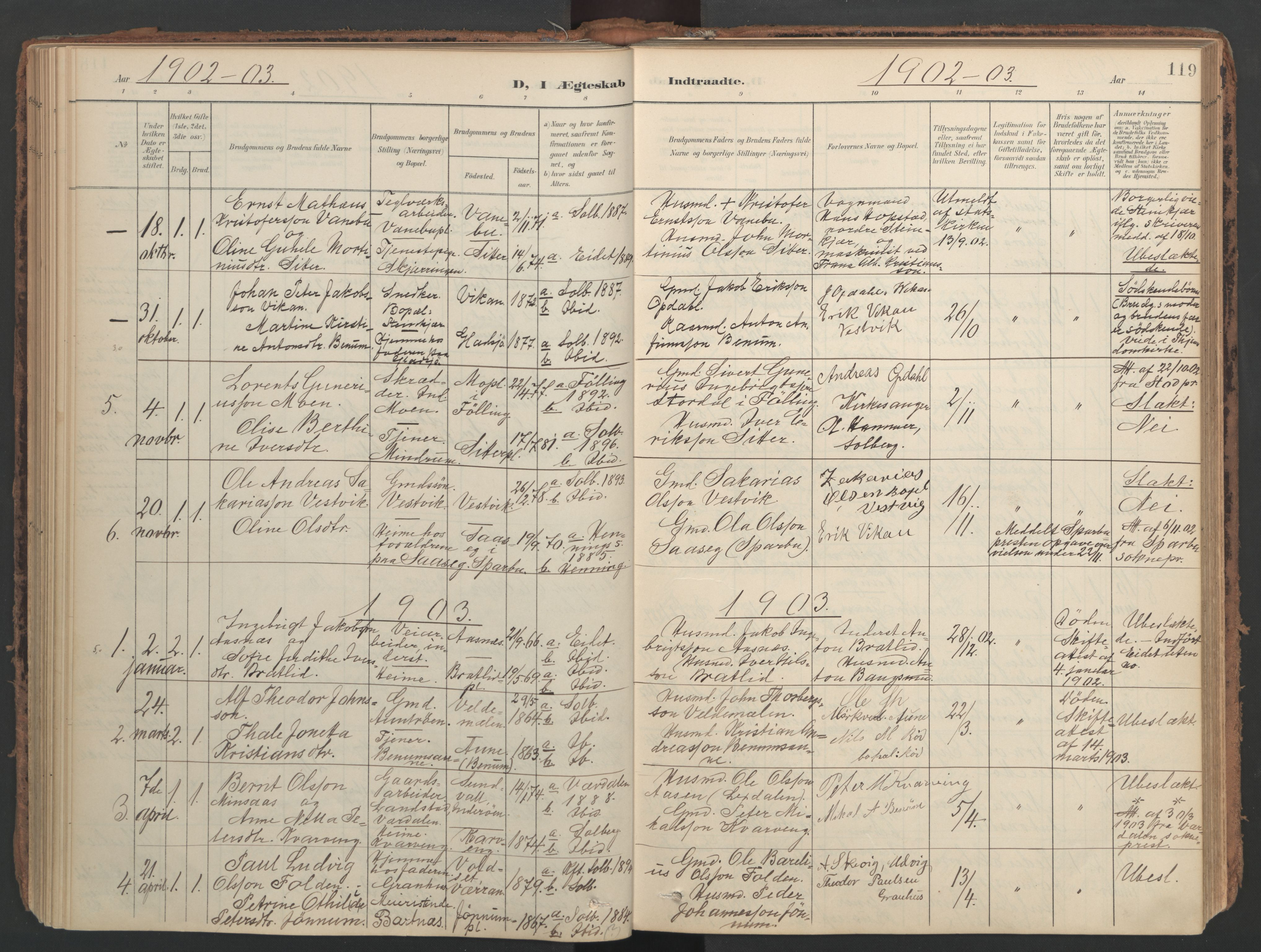 SAT, Ministerialprotokoller, klokkerbøker og fødselsregistre - Nord-Trøndelag, 741/L0397: Ministerialbok nr. 741A11, 1901-1911, s. 119