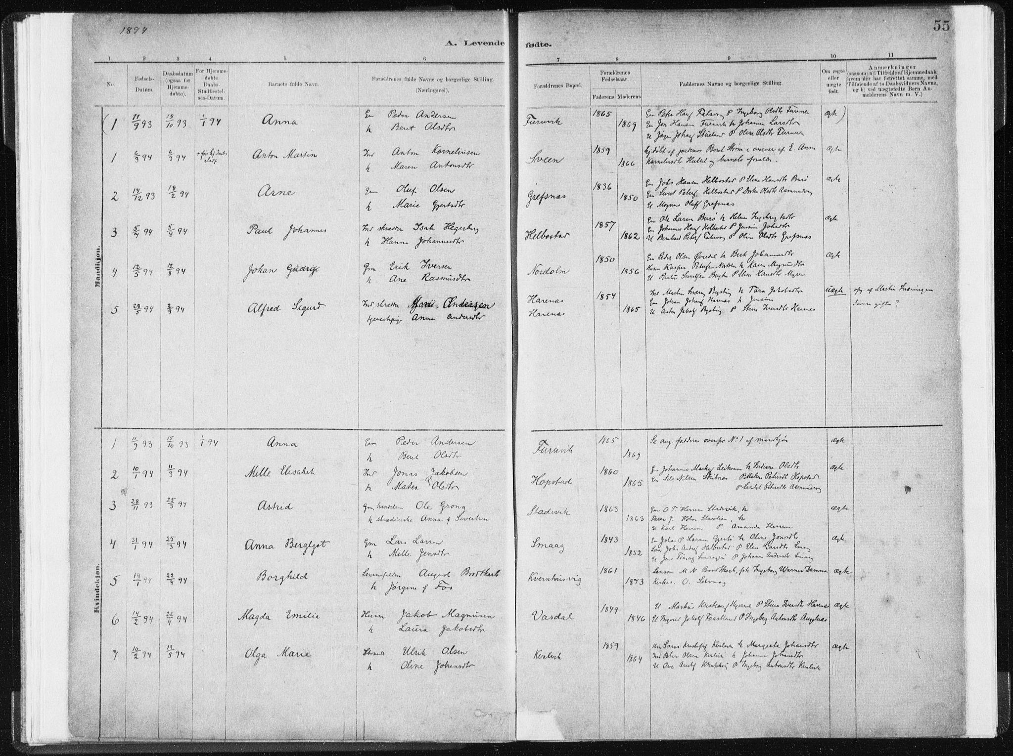 SAT, Ministerialprotokoller, klokkerbøker og fødselsregistre - Sør-Trøndelag, 634/L0533: Ministerialbok nr. 634A09, 1882-1901, s. 55