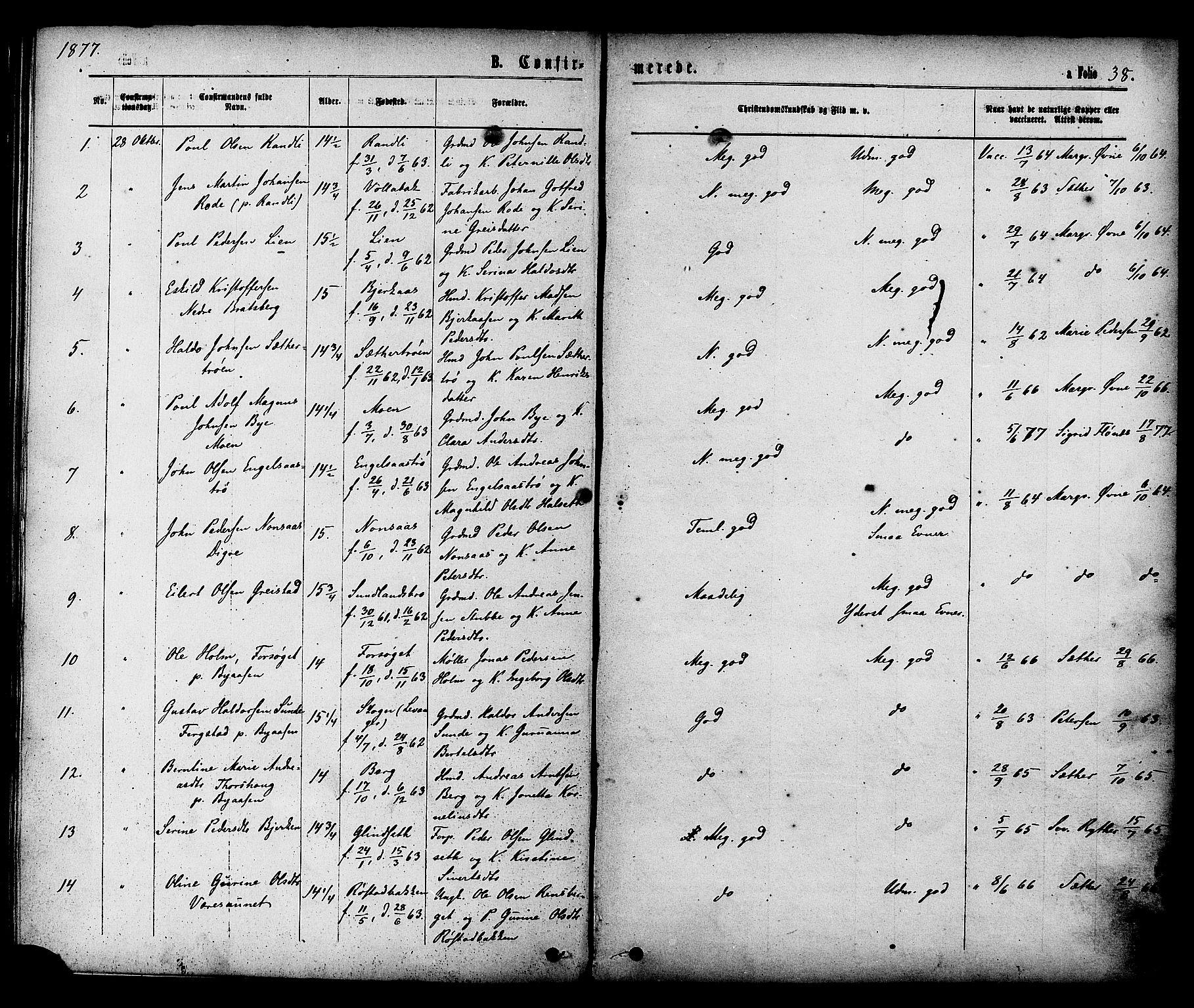 SAT, Ministerialprotokoller, klokkerbøker og fødselsregistre - Sør-Trøndelag, 608/L0334: Ministerialbok nr. 608A03, 1877-1886, s. 38
