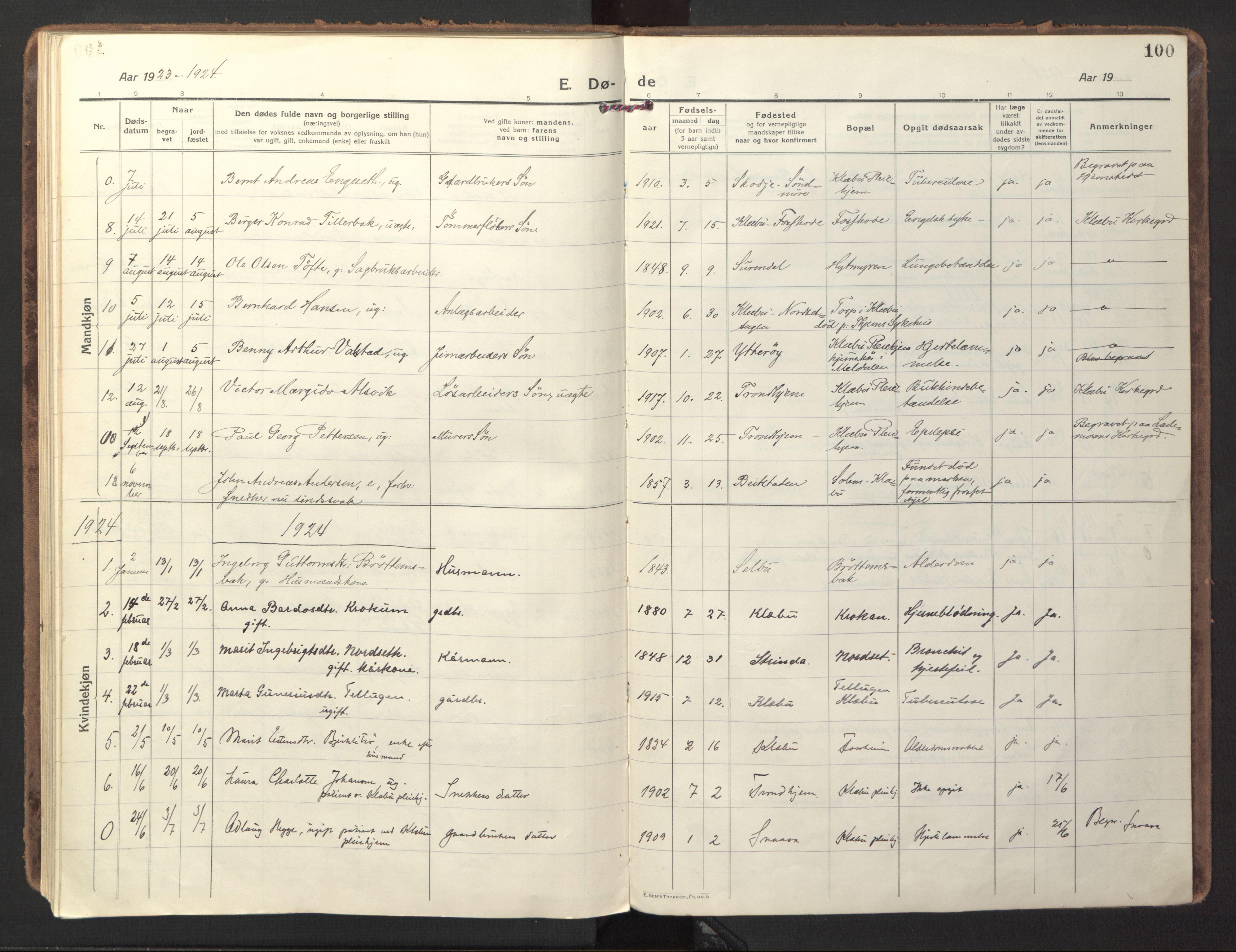 SAT, Ministerialprotokoller, klokkerbøker og fødselsregistre - Sør-Trøndelag, 618/L0449: Ministerialbok nr. 618A12, 1917-1924, s. 100