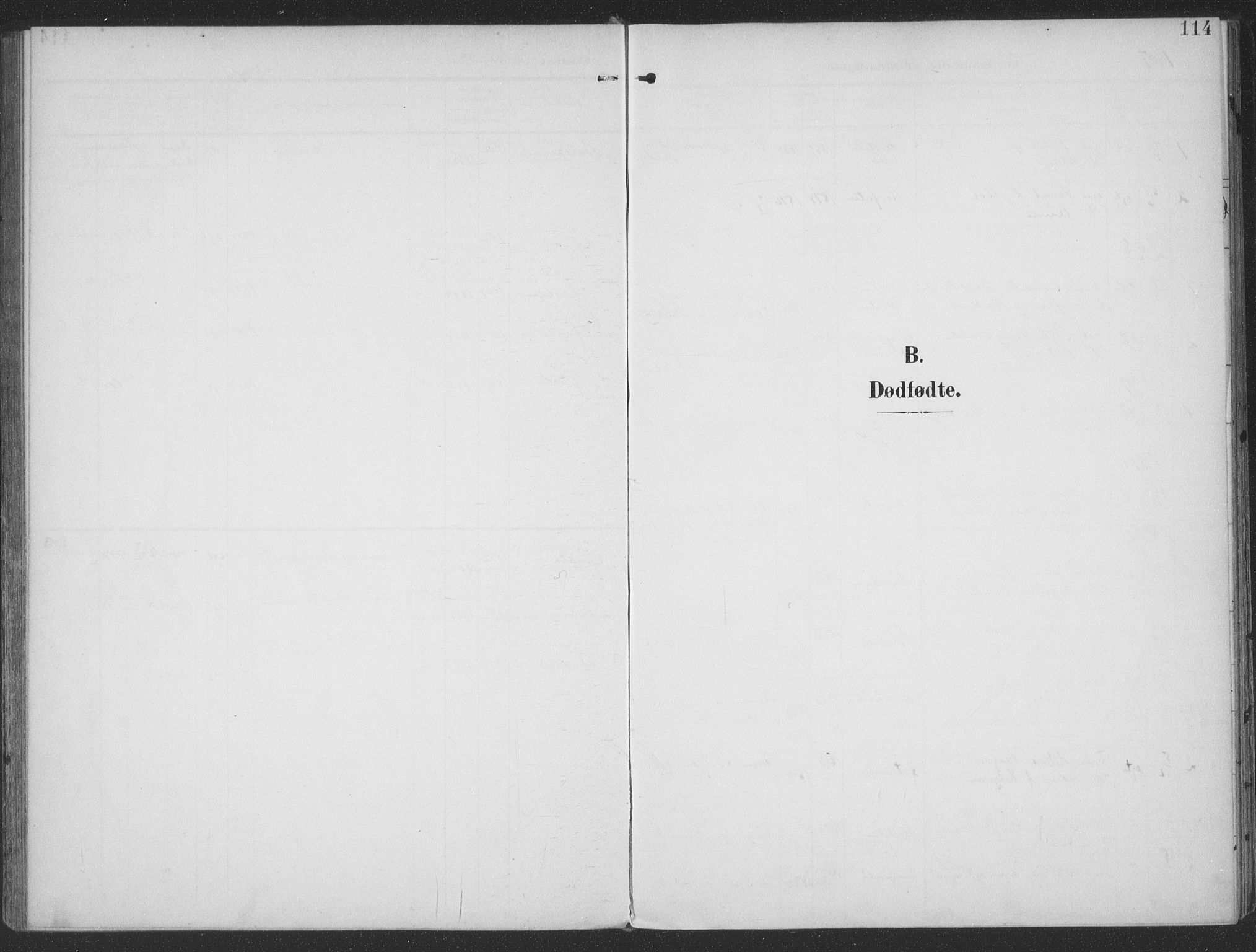SAT, Ministerialprotokoller, klokkerbøker og fødselsregistre - Møre og Romsdal, 513/L0178: Ministerialbok nr. 513A05, 1906-1919, s. 114