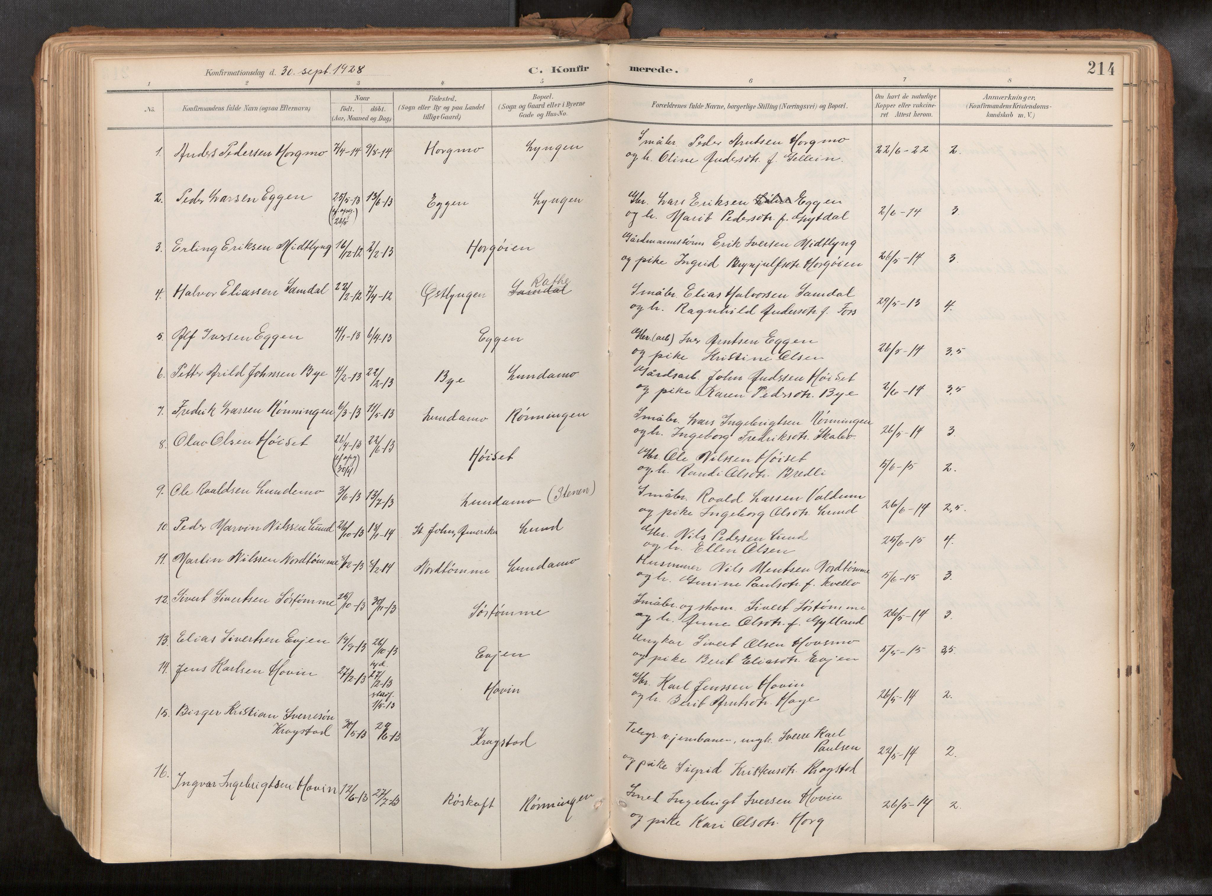 SAT, Ministerialprotokoller, klokkerbøker og fødselsregistre - Sør-Trøndelag, 692/L1105b: Ministerialbok nr. 692A06, 1891-1934, s. 214