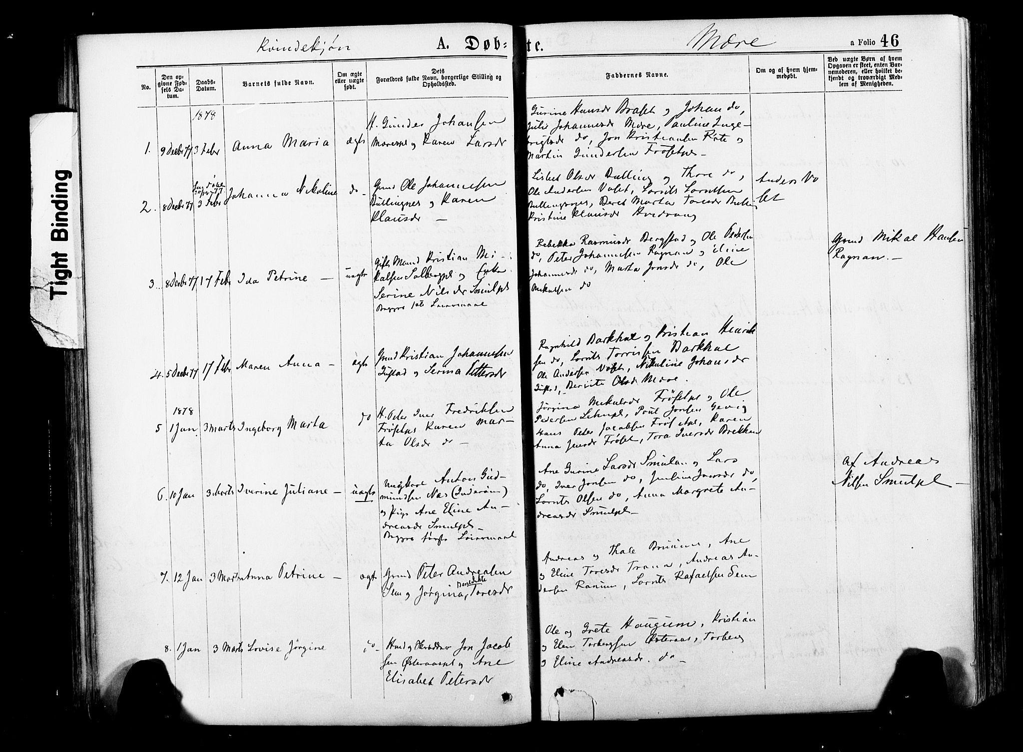 SAT, Ministerialprotokoller, klokkerbøker og fødselsregistre - Nord-Trøndelag, 735/L0348: Ministerialbok nr. 735A09 /1, 1873-1883, s. 46