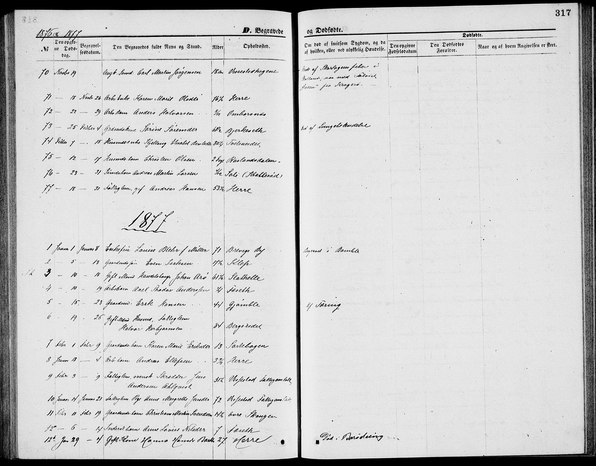 SAKO, Bamble kirkebøker, G/Ga/L0007: Klokkerbok nr. I 7, 1876-1877, s. 317