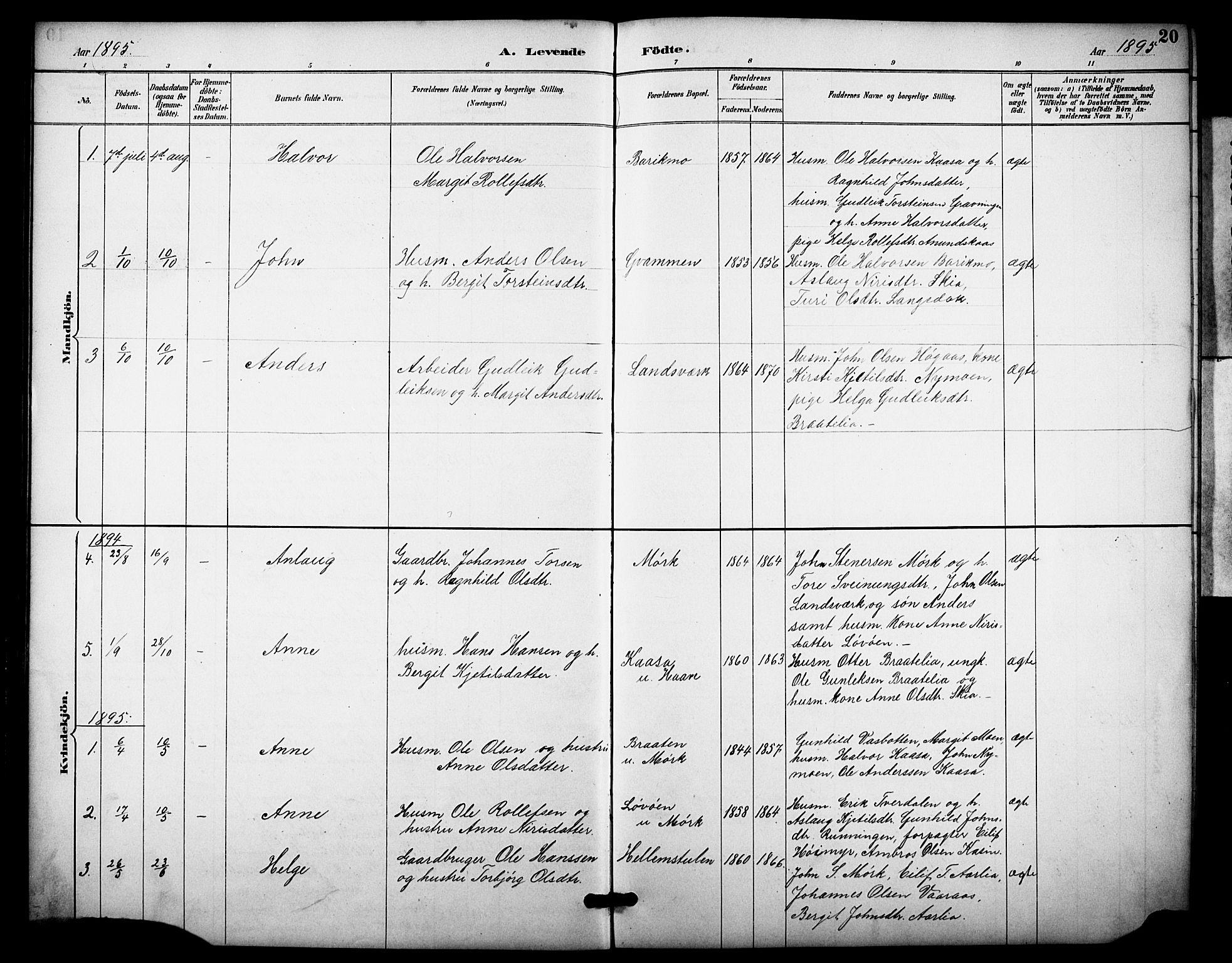 SAKO, Heddal kirkebøker, F/Fb/L0001: Ministerialbok nr. II 1, 1884-1910, s. 20