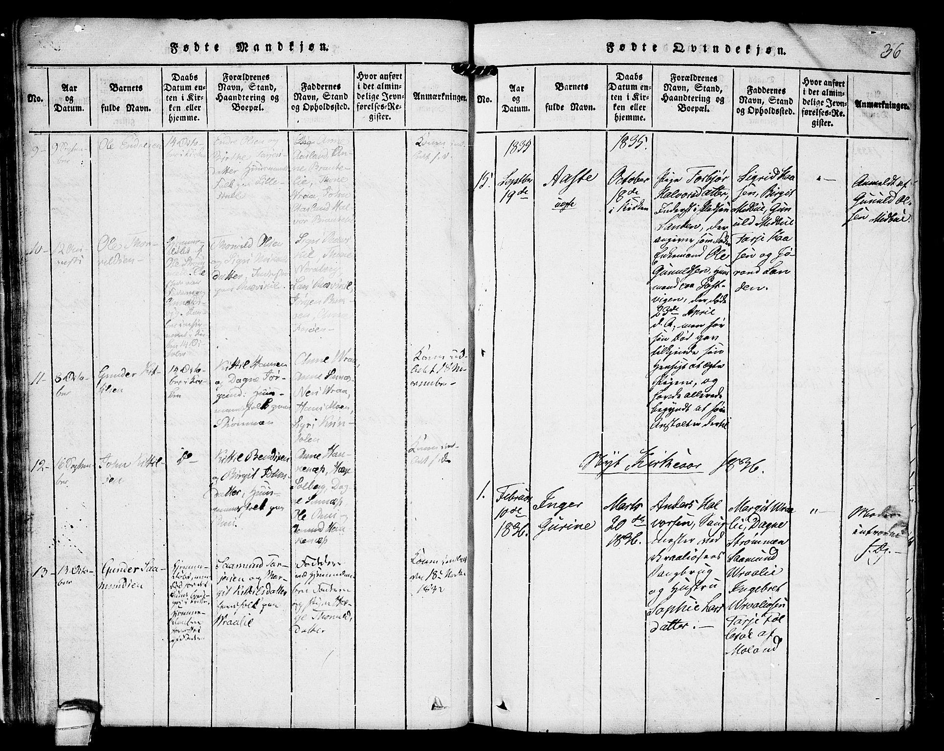 SAKO, Kviteseid kirkebøker, F/Fc/L0001: Ministerialbok nr. III 1, 1815-1836, s. 36