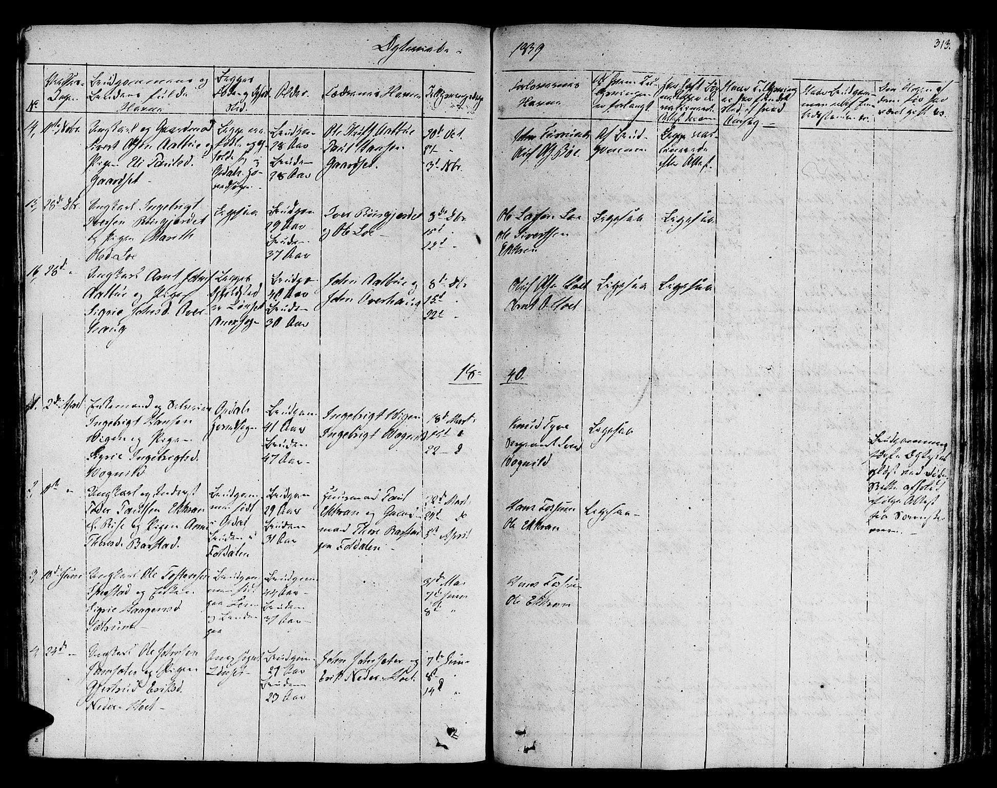SAT, Ministerialprotokoller, klokkerbøker og fødselsregistre - Sør-Trøndelag, 678/L0897: Ministerialbok nr. 678A06-07, 1821-1847, s. 313