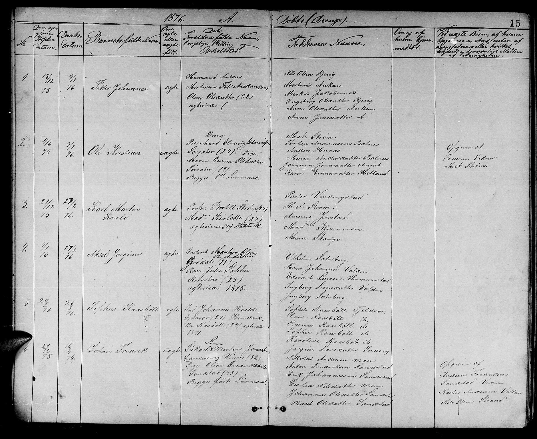 SAT, Ministerialprotokoller, klokkerbøker og fødselsregistre - Sør-Trøndelag, 637/L0561: Klokkerbok nr. 637C02, 1873-1882, s. 15