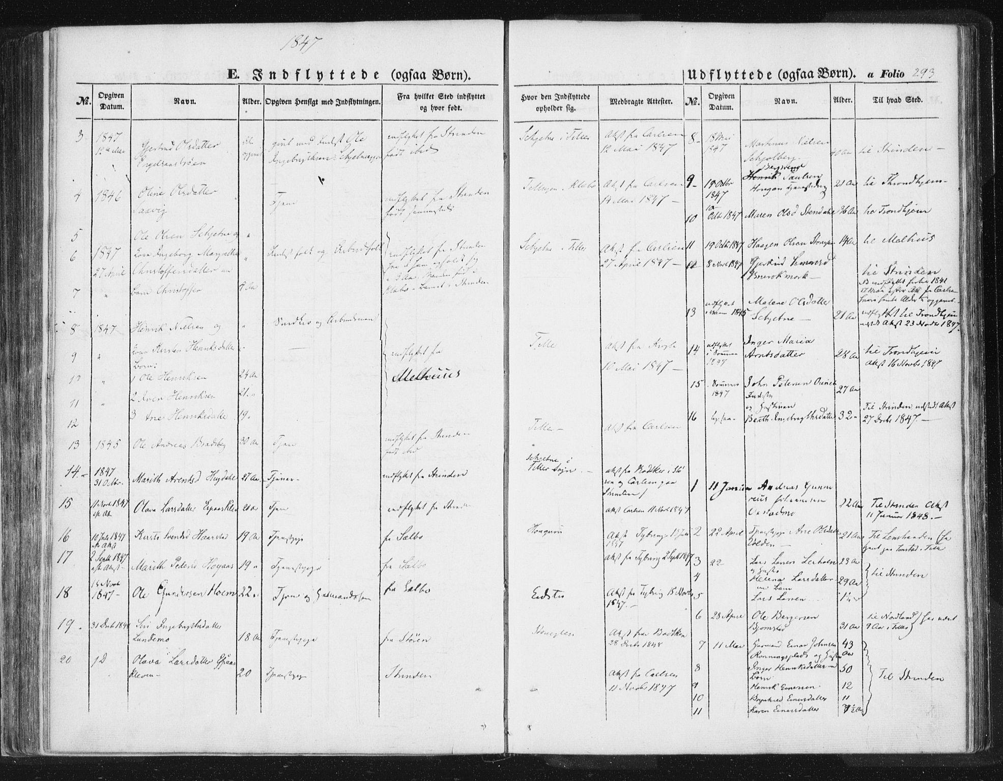 SAT, Ministerialprotokoller, klokkerbøker og fødselsregistre - Sør-Trøndelag, 618/L0441: Ministerialbok nr. 618A05, 1843-1862, s. 293