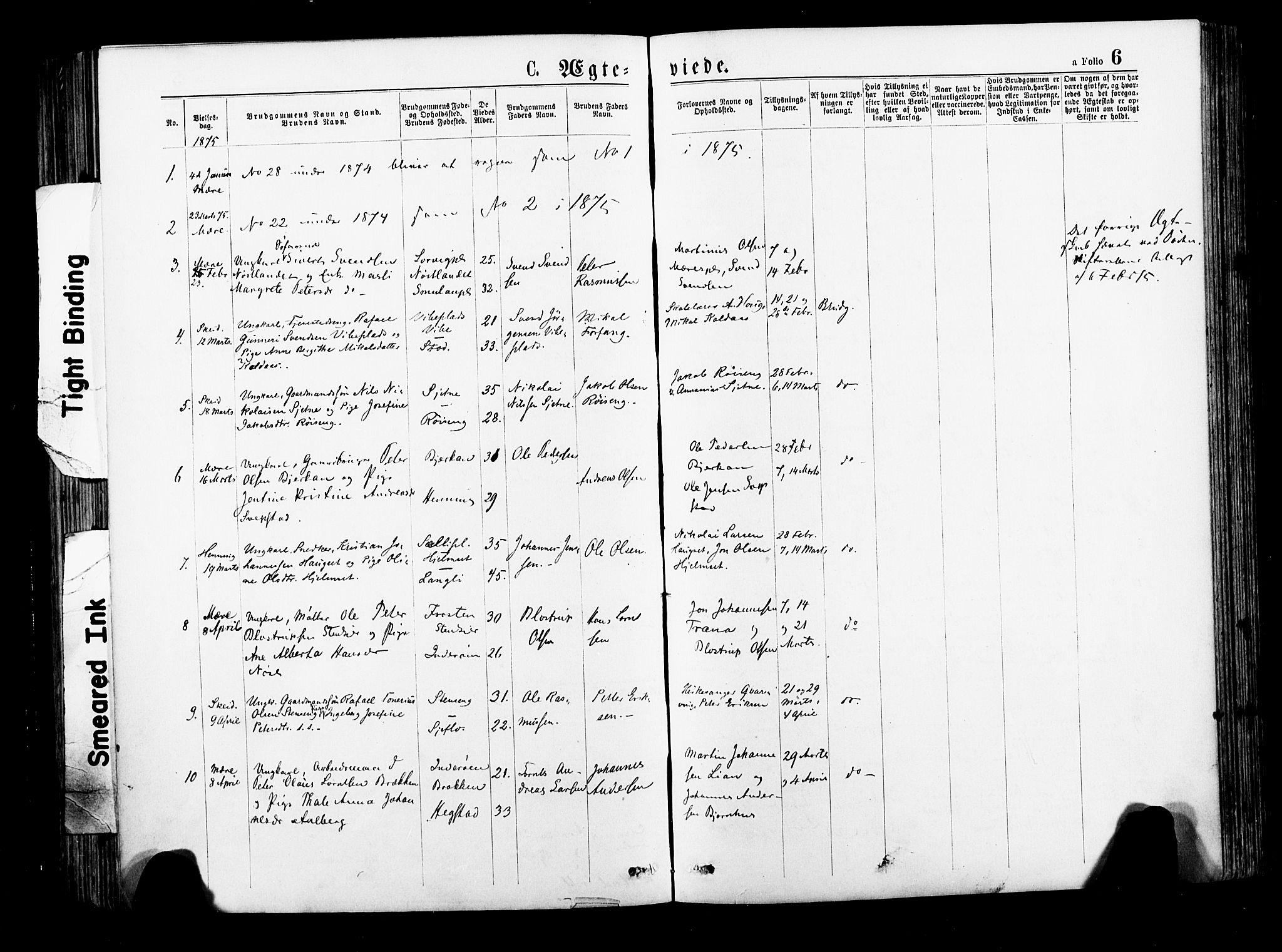 SAT, Ministerialprotokoller, klokkerbøker og fødselsregistre - Nord-Trøndelag, 735/L0348: Ministerialbok nr. 735A09 /1, 1873-1883, s. 6