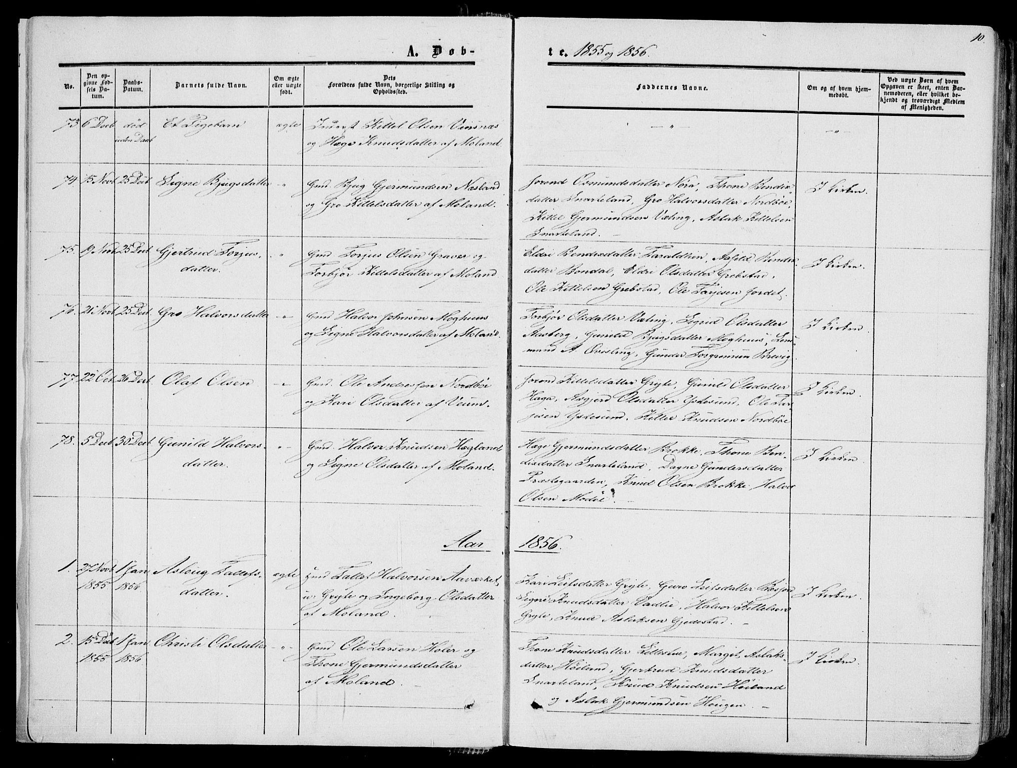 SAKO, Fyresdal kirkebøker, F/Fa/L0005: Ministerialbok nr. I 5, 1855-1871, s. 10