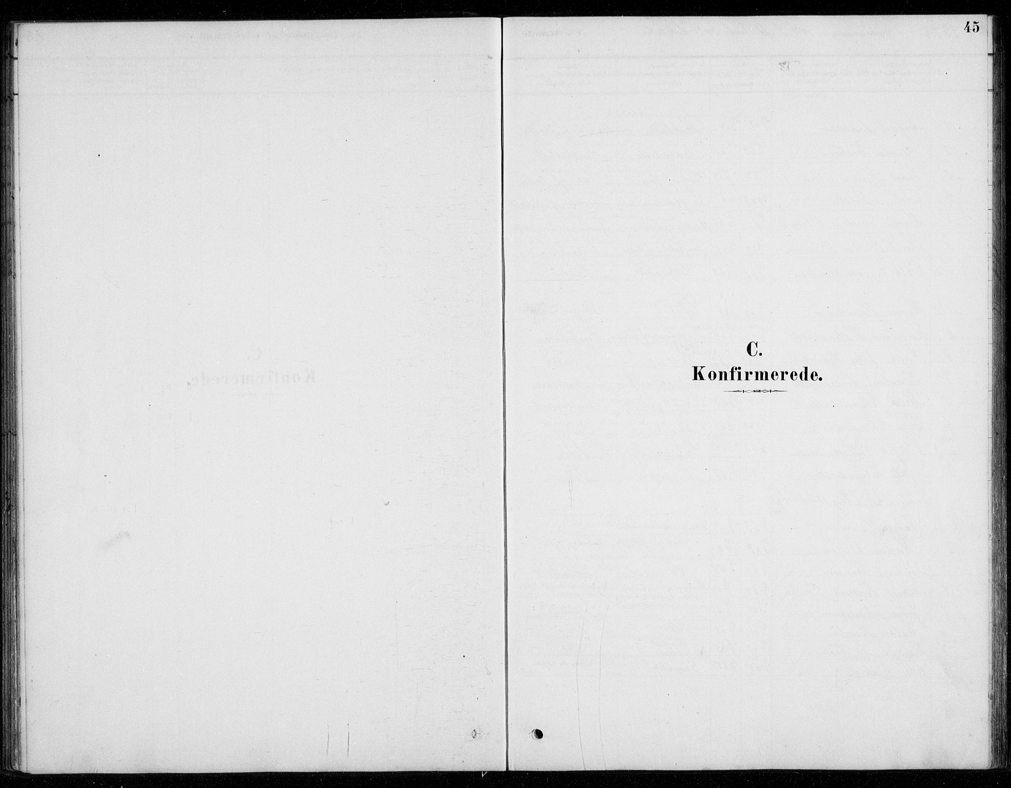 SAO, Fet prestekontor Kirkebøker, G/Gb/L0002: Klokkerbok nr. II 2, 1878-1911, s. 45