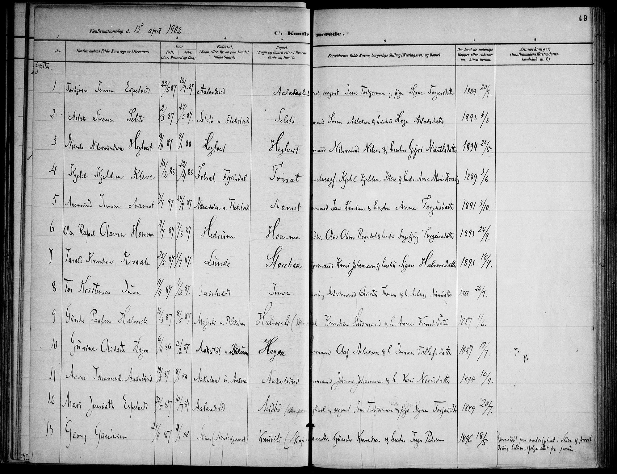 SAKO, Lårdal kirkebøker, F/Fa/L0007: Ministerialbok nr. I 7, 1887-1906, s. 49
