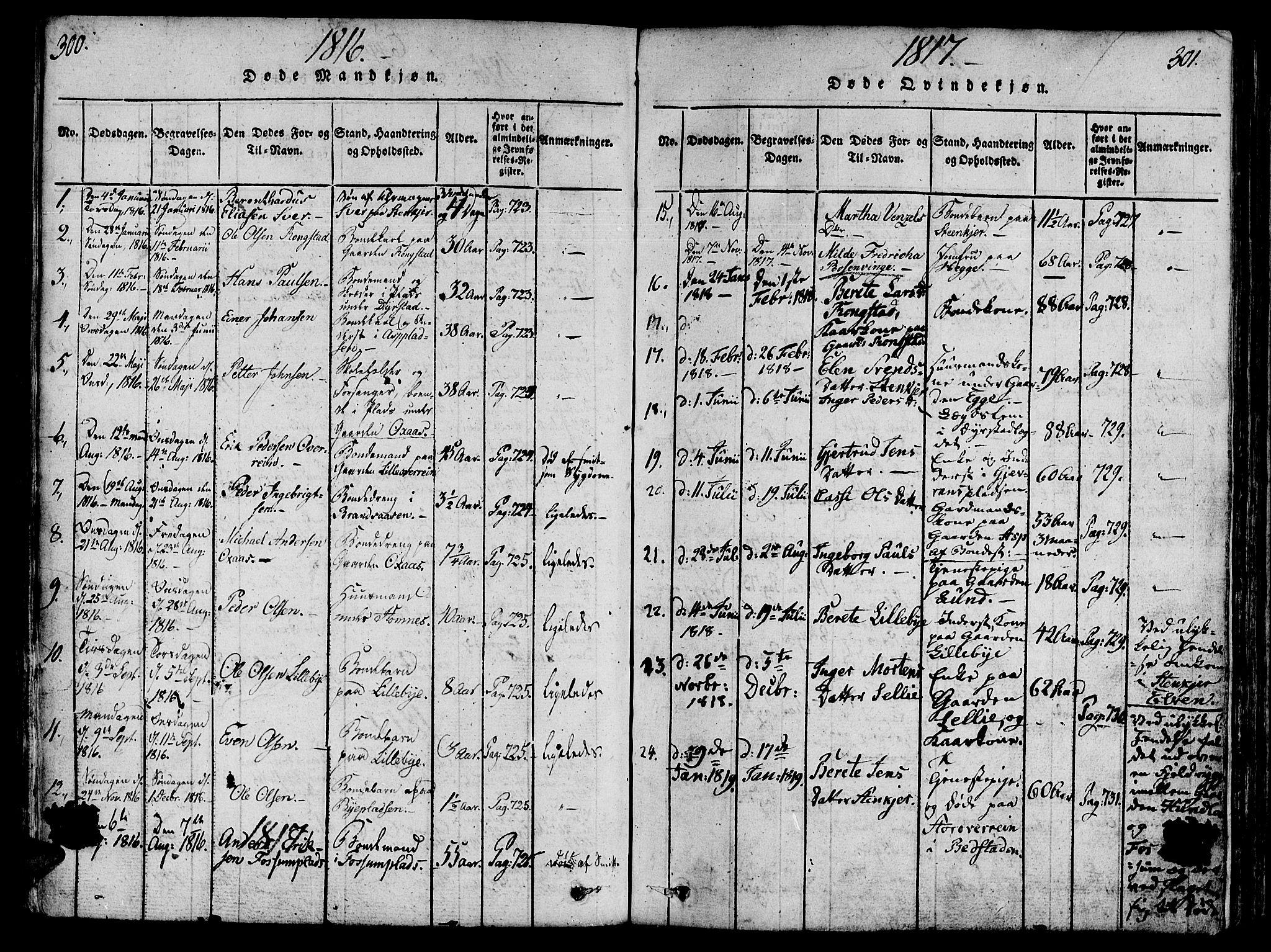SAT, Ministerialprotokoller, klokkerbøker og fødselsregistre - Nord-Trøndelag, 746/L0441: Ministerialbok nr. 736A03 /3, 1816-1827, s. 300-301