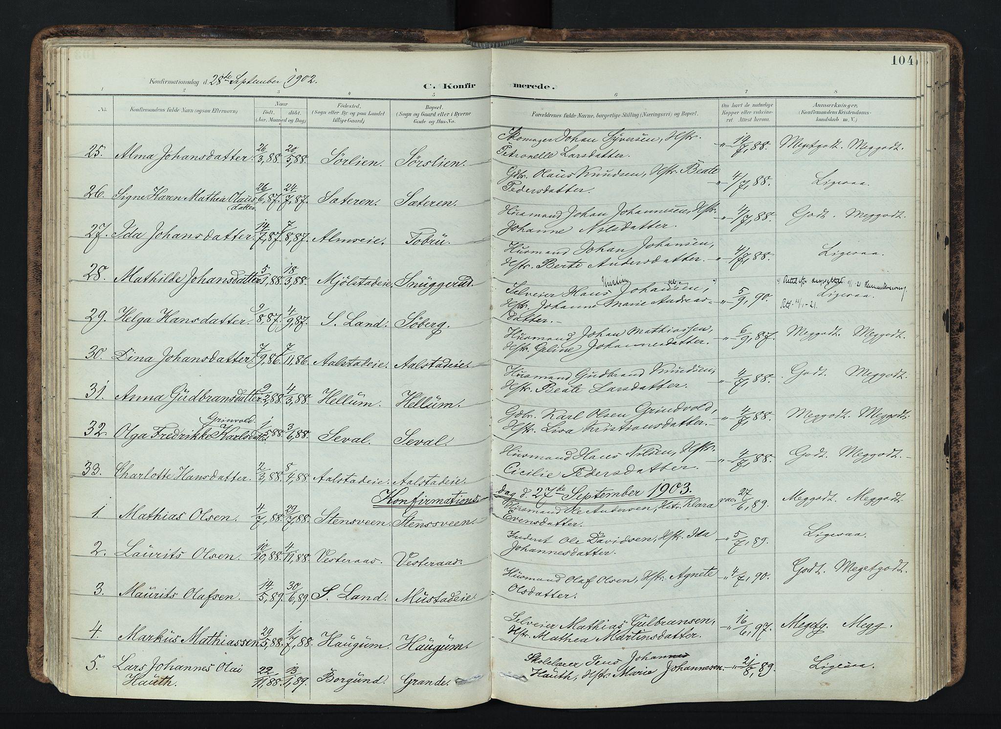 SAH, Vardal prestekontor, H/Ha/Haa/L0019: Ministerialbok nr. 19, 1893-1907, s. 104