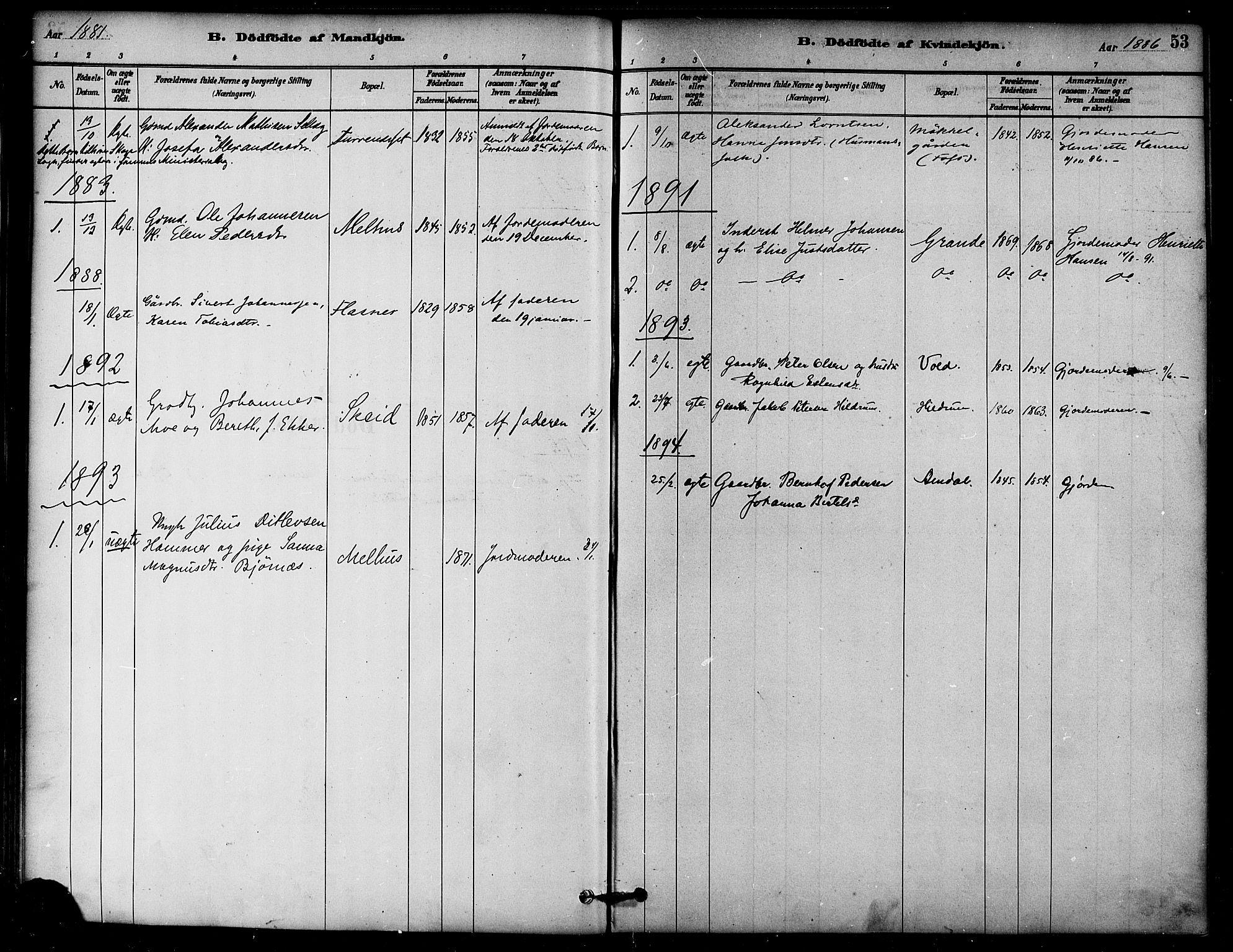 SAT, Ministerialprotokoller, klokkerbøker og fødselsregistre - Nord-Trøndelag, 764/L0555: Ministerialbok nr. 764A10, 1881-1896, s. 53