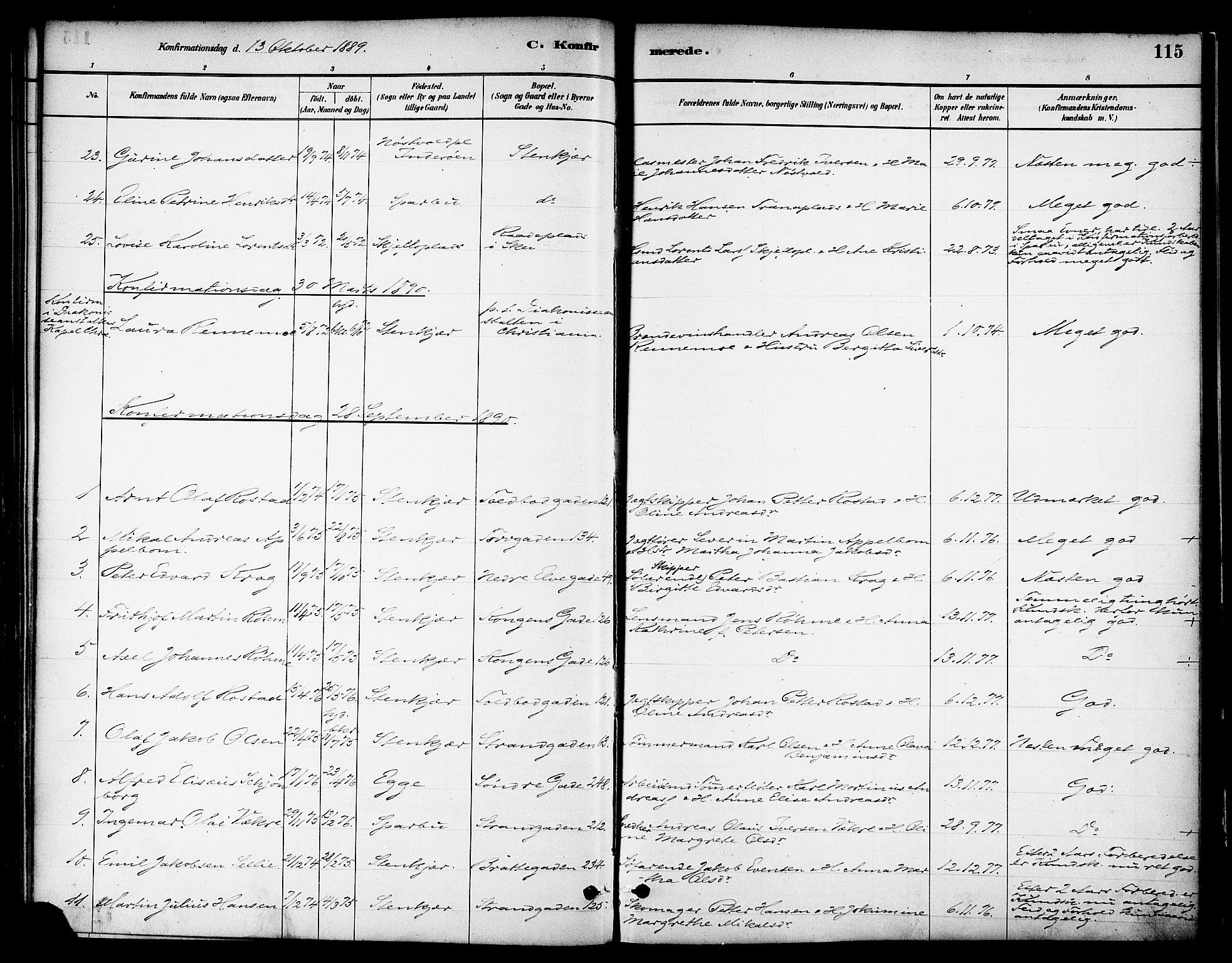 SAT, Ministerialprotokoller, klokkerbøker og fødselsregistre - Nord-Trøndelag, 739/L0371: Ministerialbok nr. 739A03, 1881-1895, s. 115