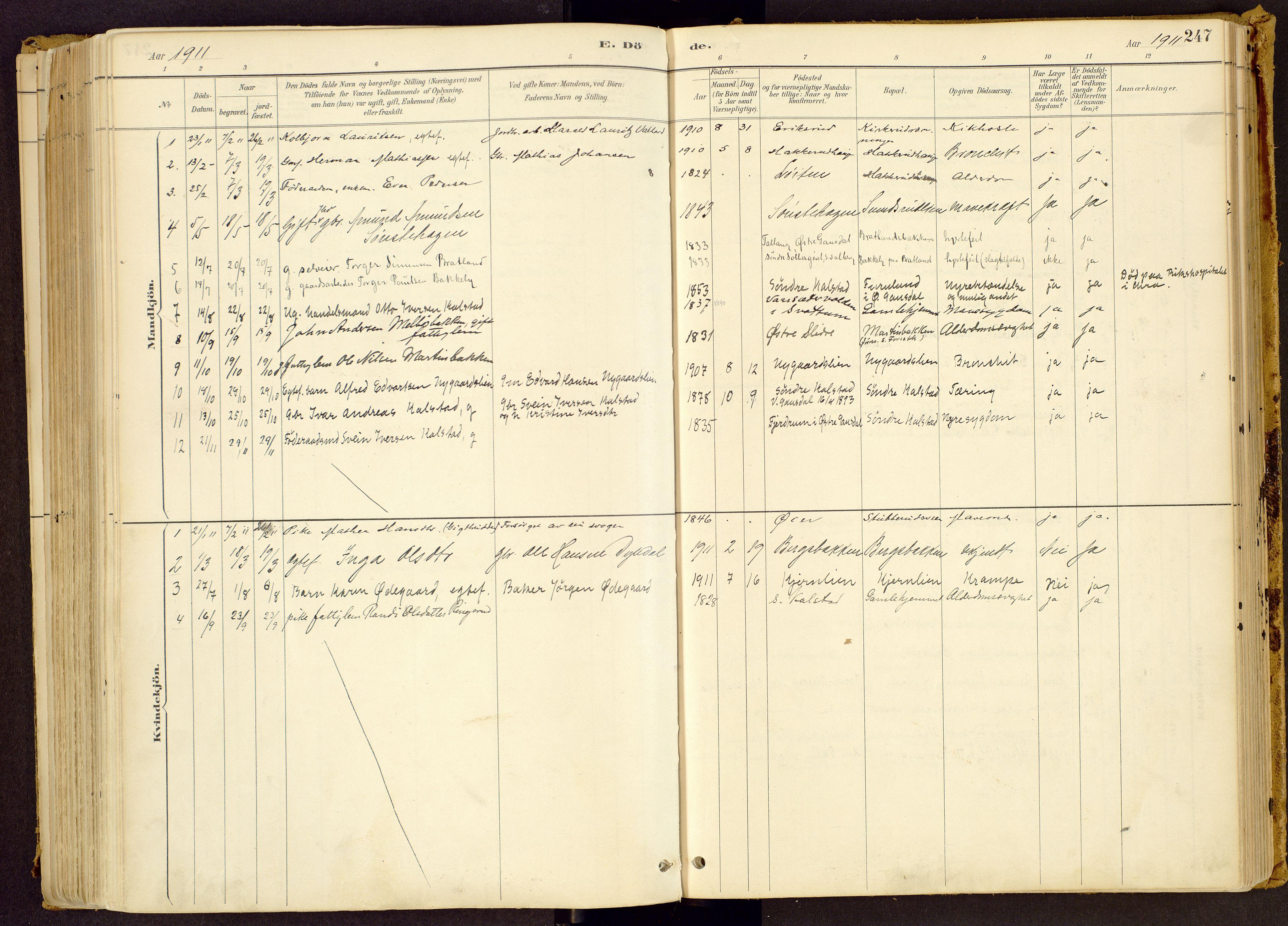 SAH, Vestre Gausdal prestekontor, Ministerialbok nr. 1, 1887-1914, s. 247