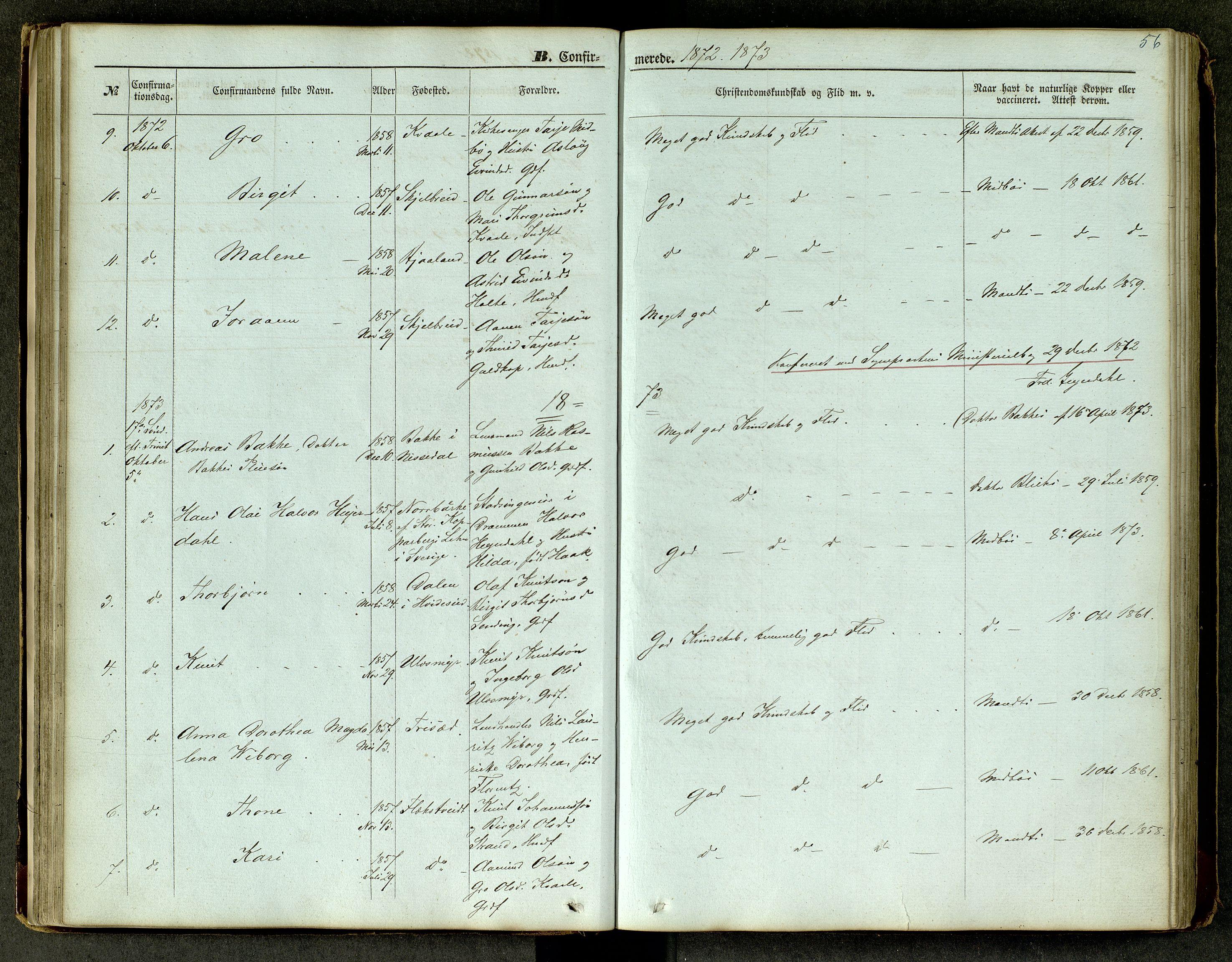 SAKO, Lårdal kirkebøker, G/Ga/L0002: Klokkerbok nr. I 2, 1861-1890, s. 56