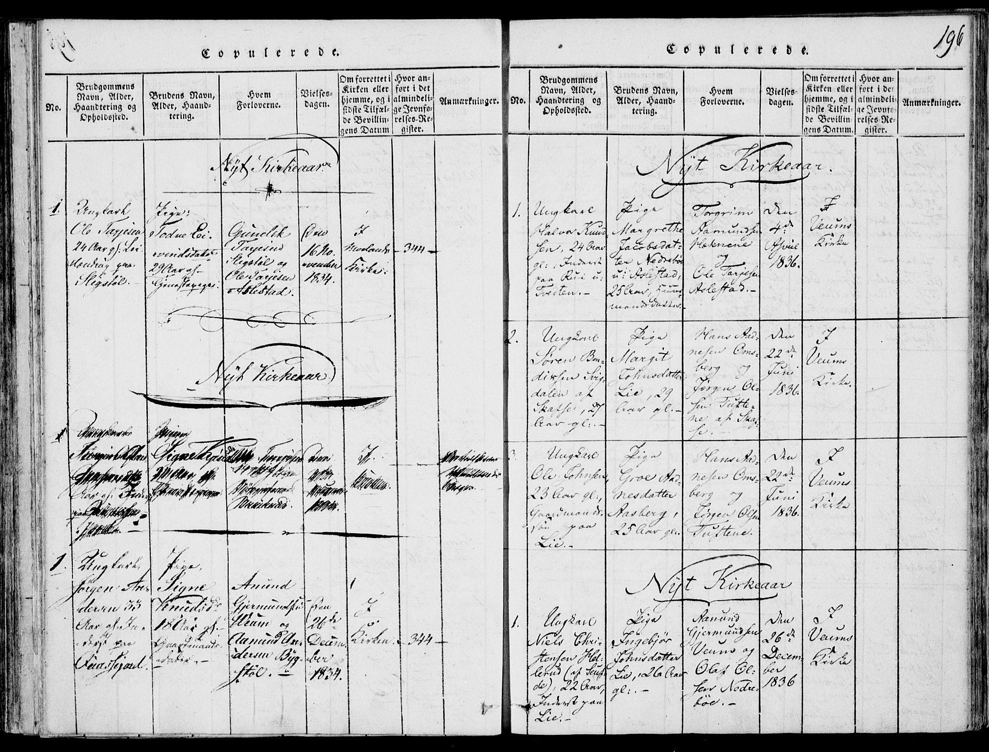 SAKO, Fyresdal kirkebøker, F/Fb/L0001: Ministerialbok nr. II 1, 1815-1854, s. 196